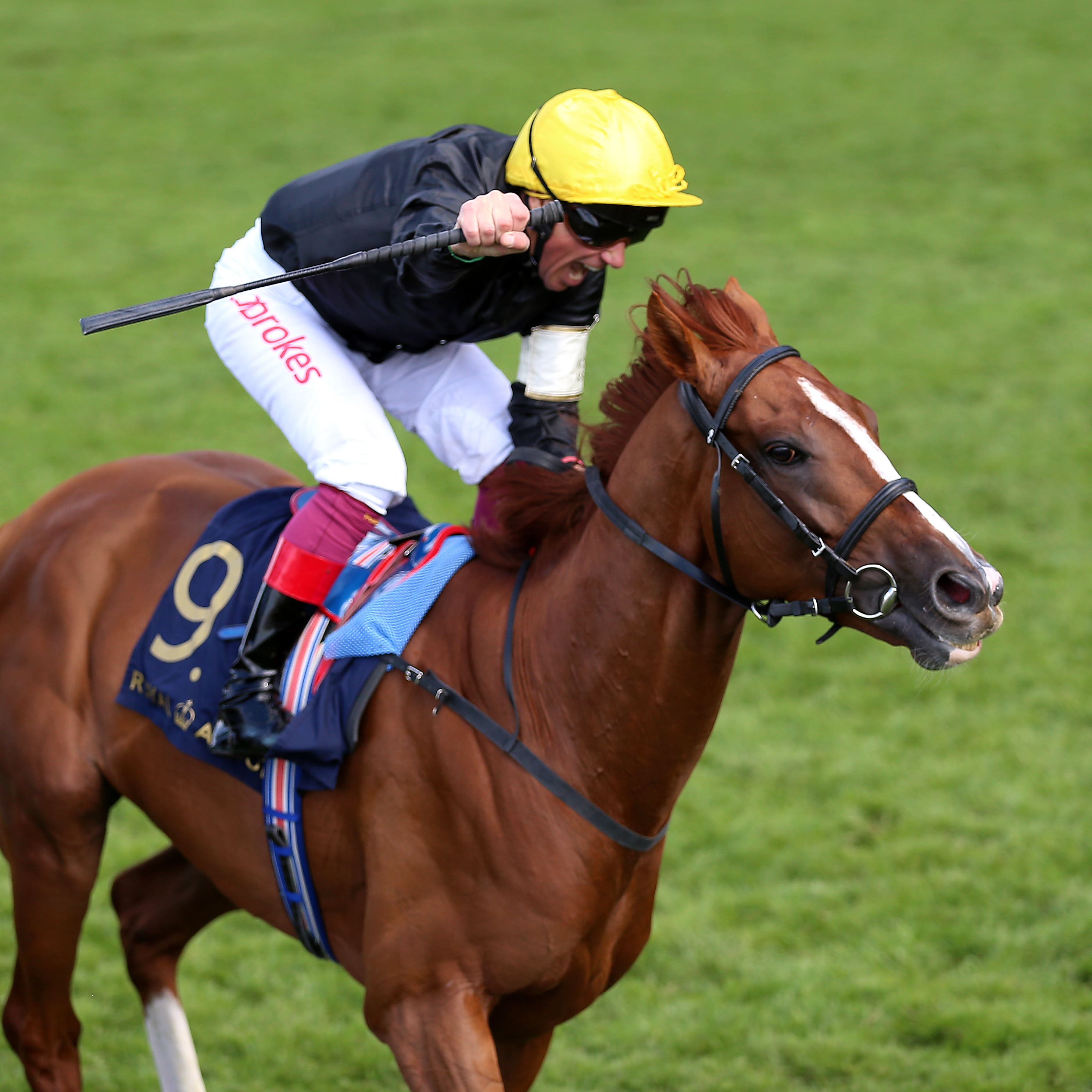 Frankie Dettori and Stradivarius win the Gold Cup