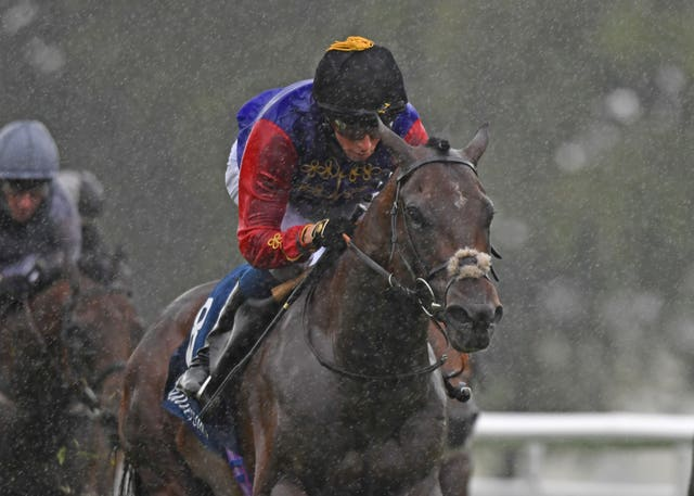 Tactical won the July Stakes earlier in the campaign