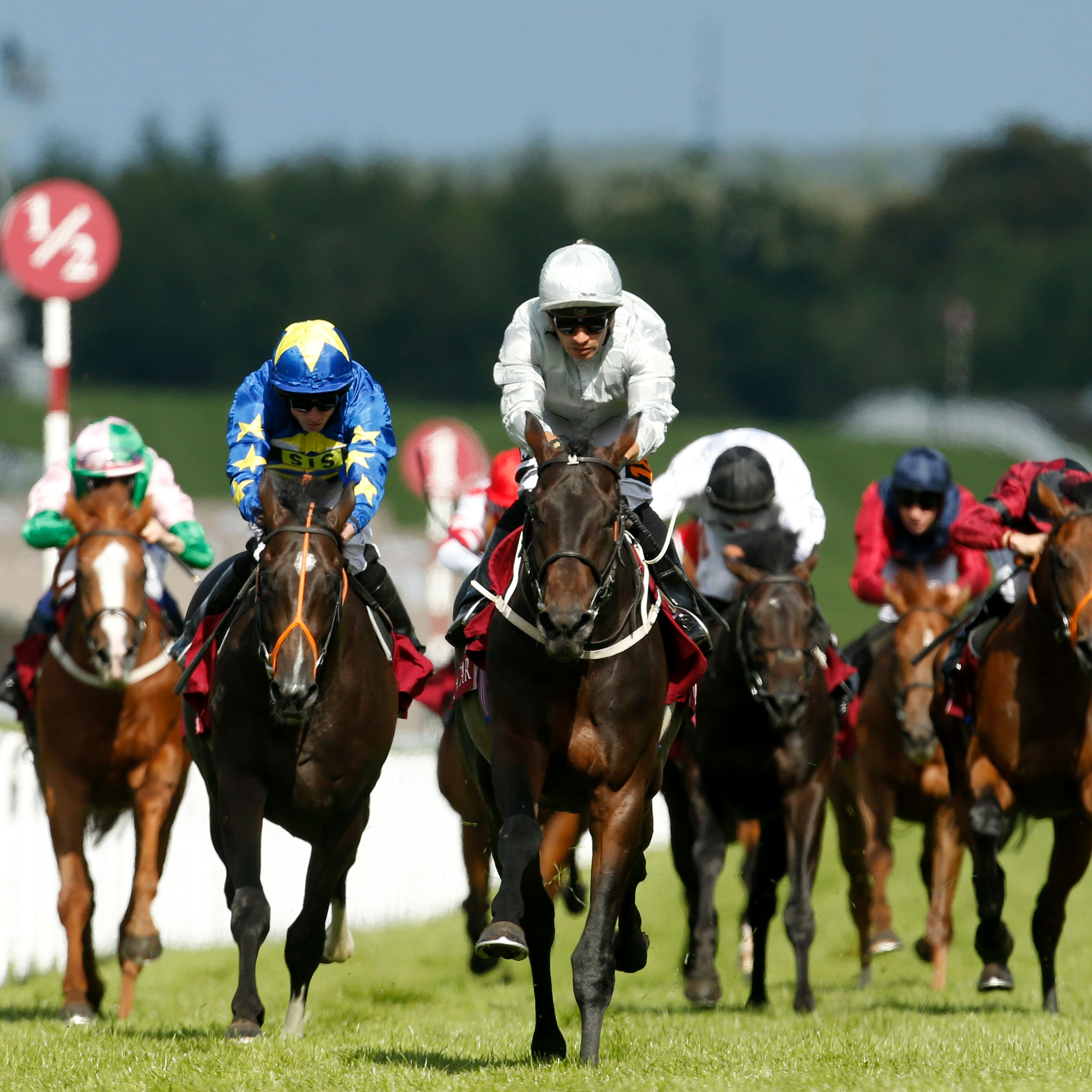 Dee Ex Bee (centre) on his way to winning at Goodwood last summer
