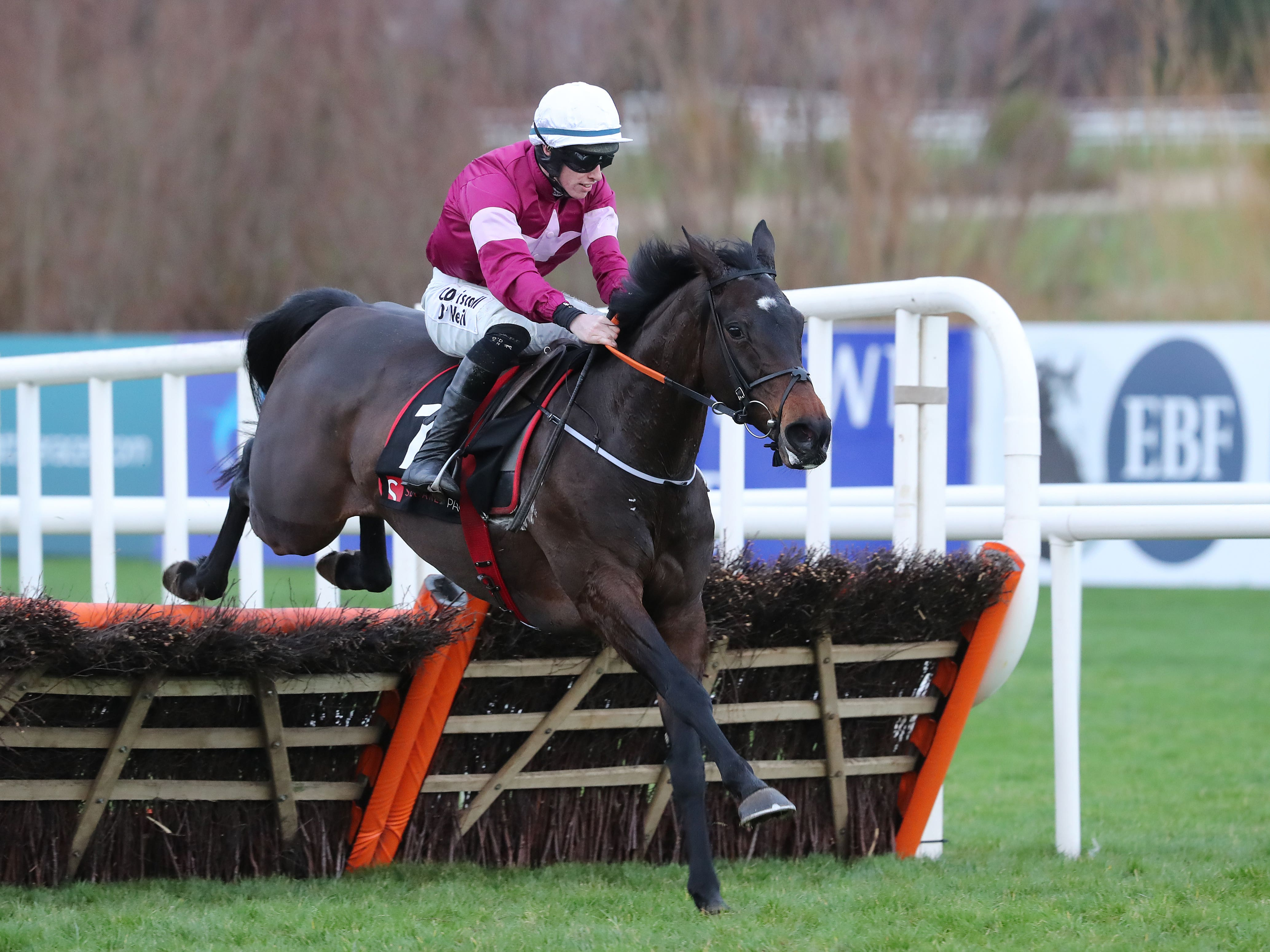 Apple's Jade could run at the Punchestown Festival (Niall Carson/PA)