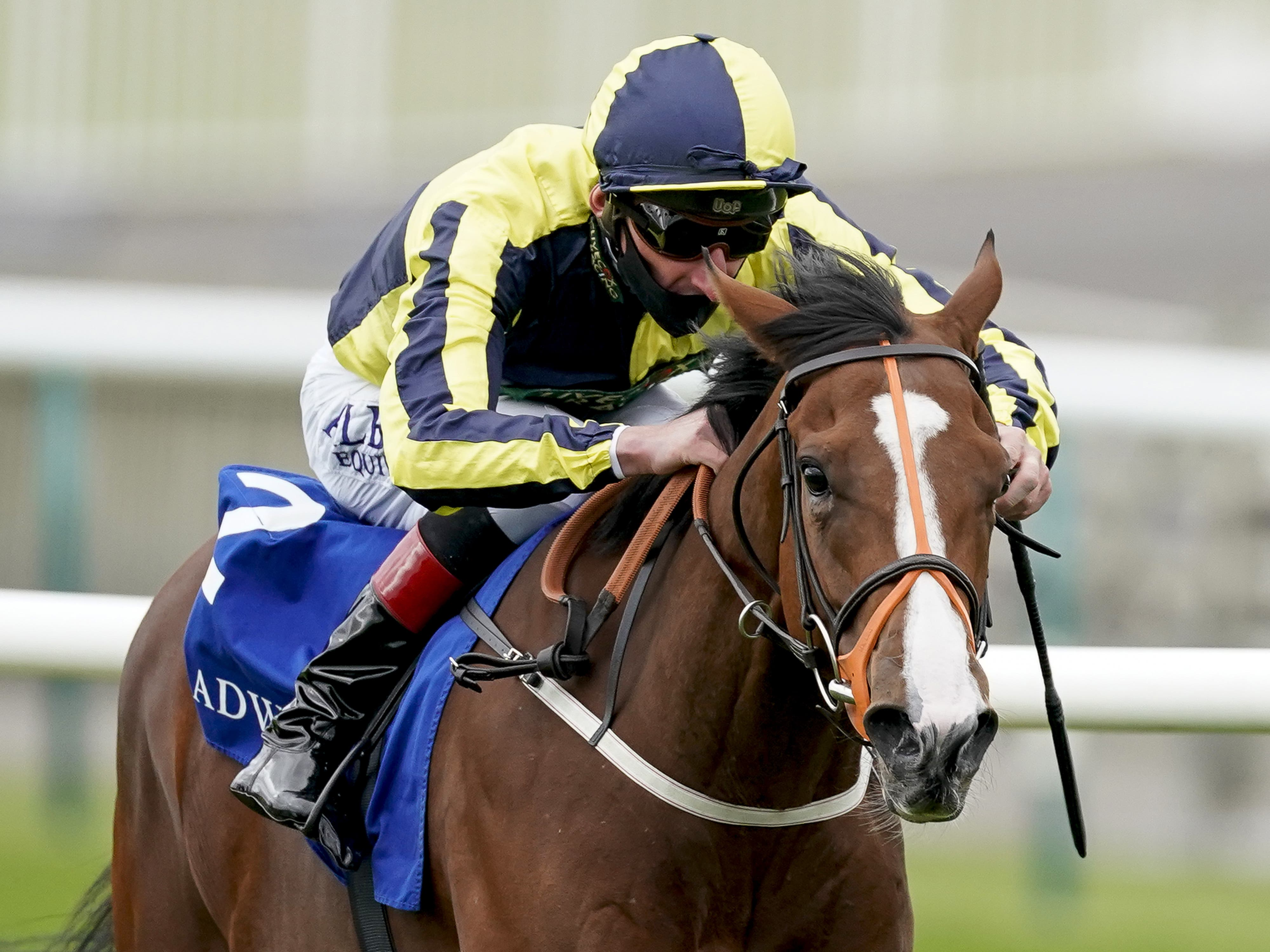 Isabella Giles impressed in the Rockfel Stakes at Newmarket (Alan Crowhurst/PA)