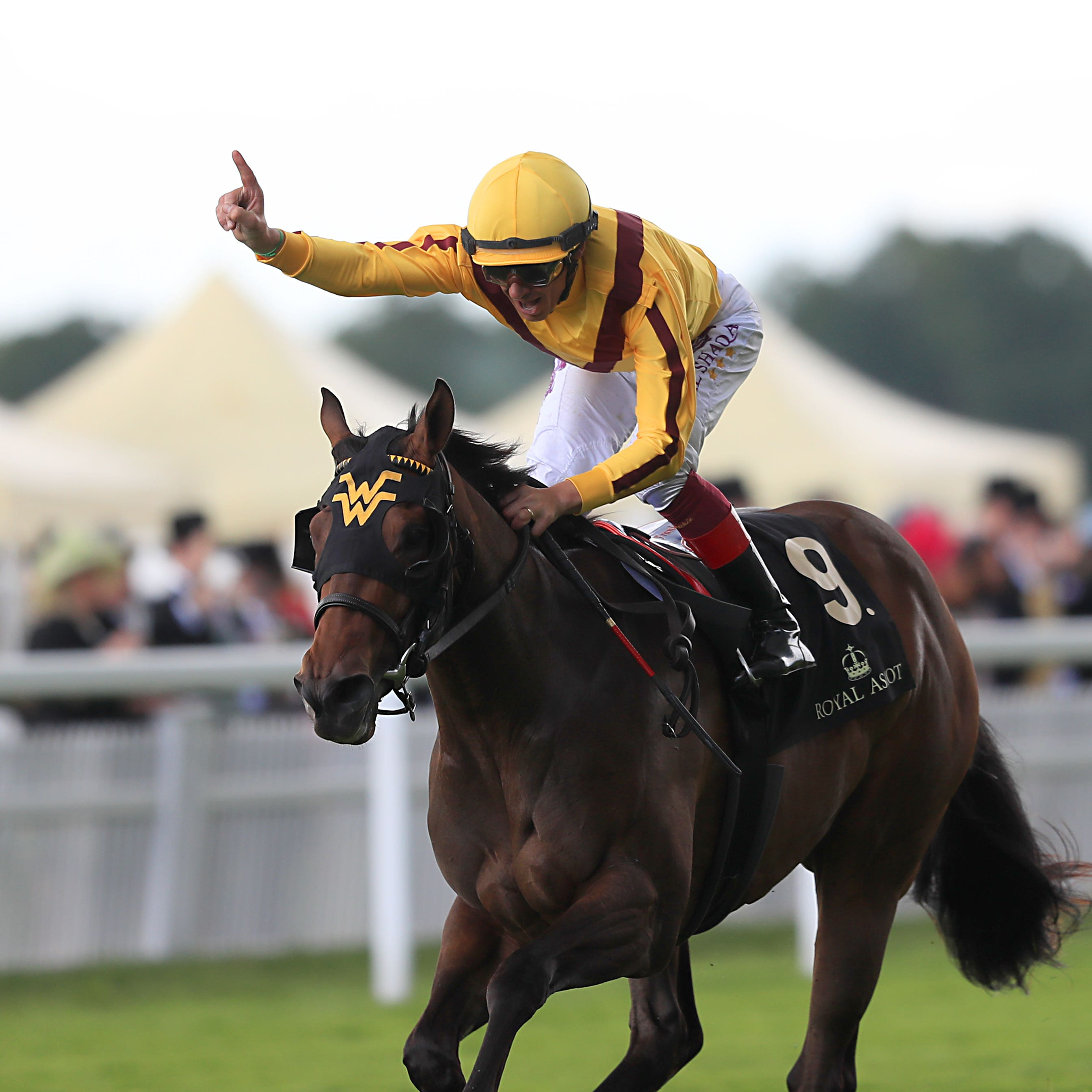 Lady Aurelia was at her best at Royal Ascot