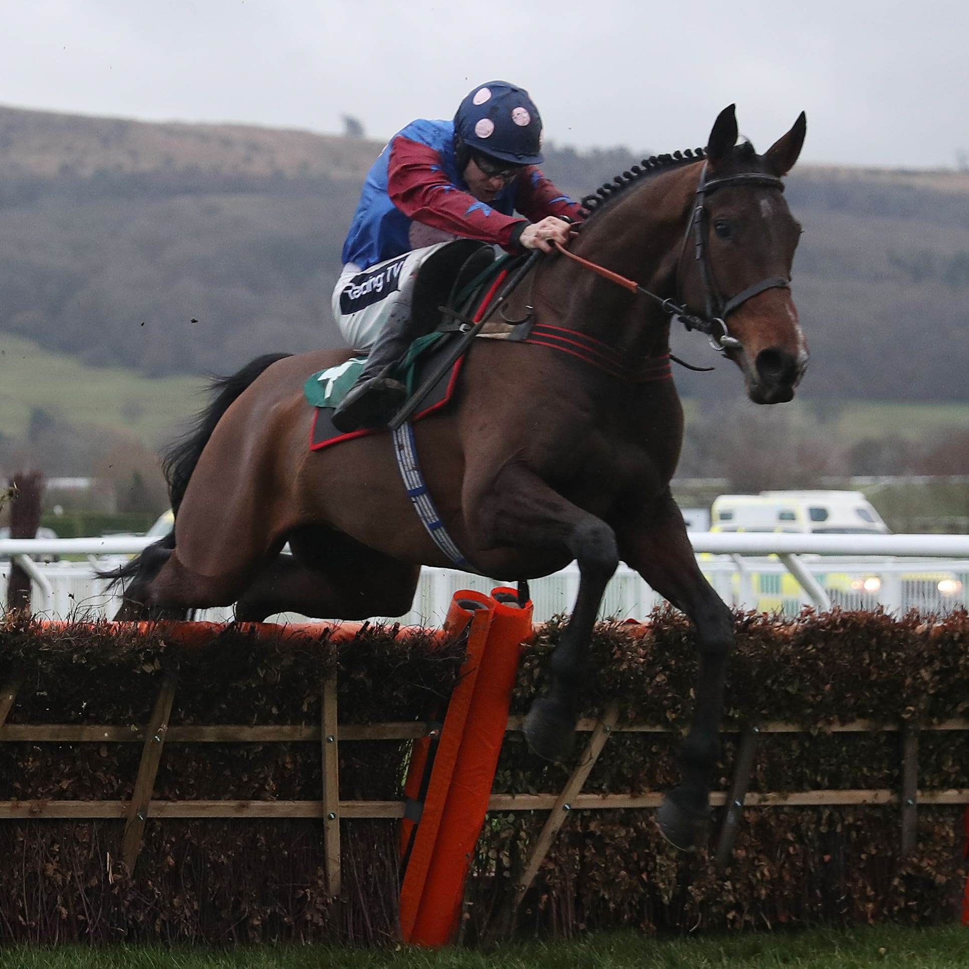 Paisley Park opens his Cheltenham account in the Cleeve Hurdle in January