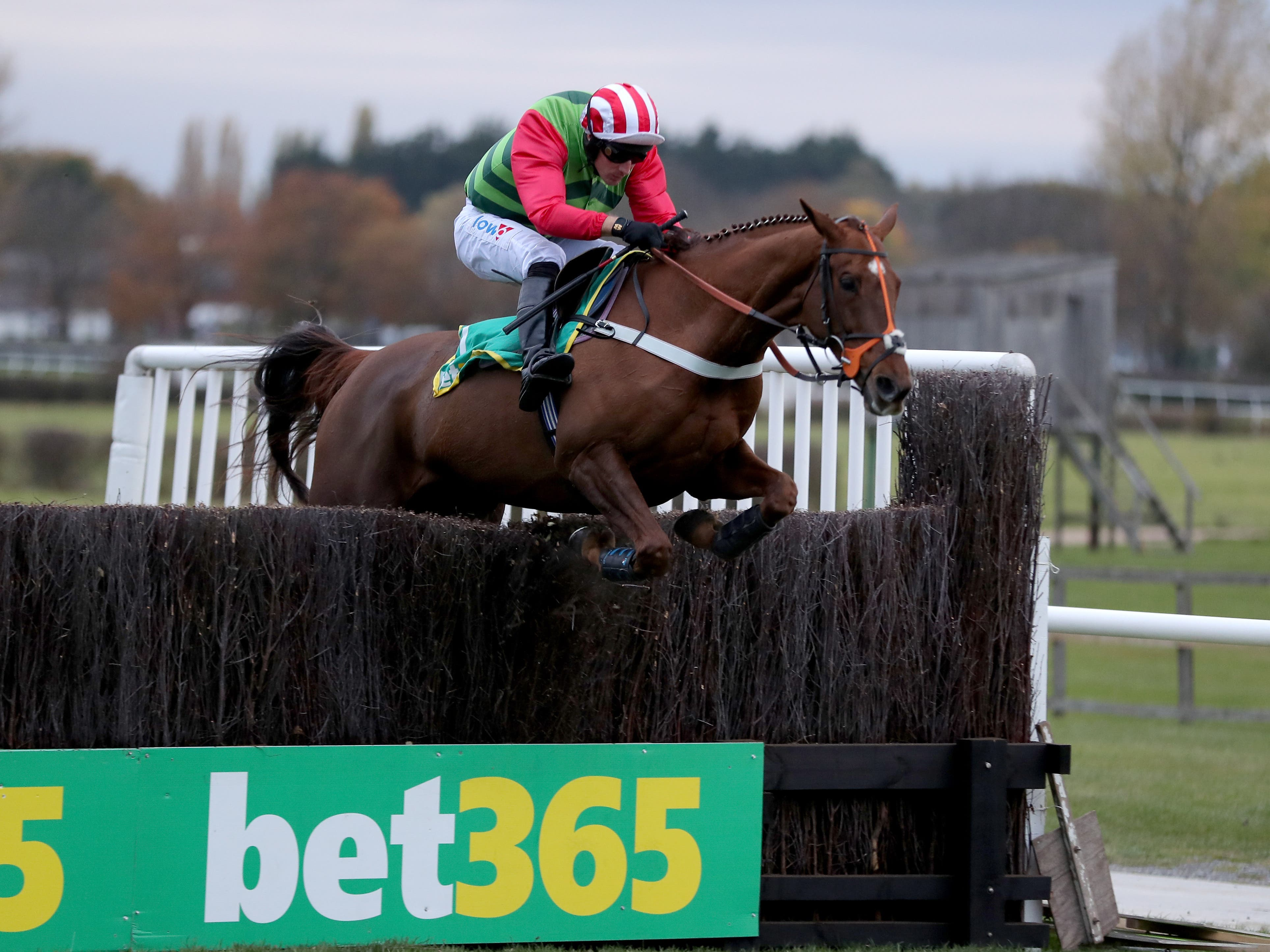 Definitly Red will run at Haydock this weekend (Richard Sellers/PA)