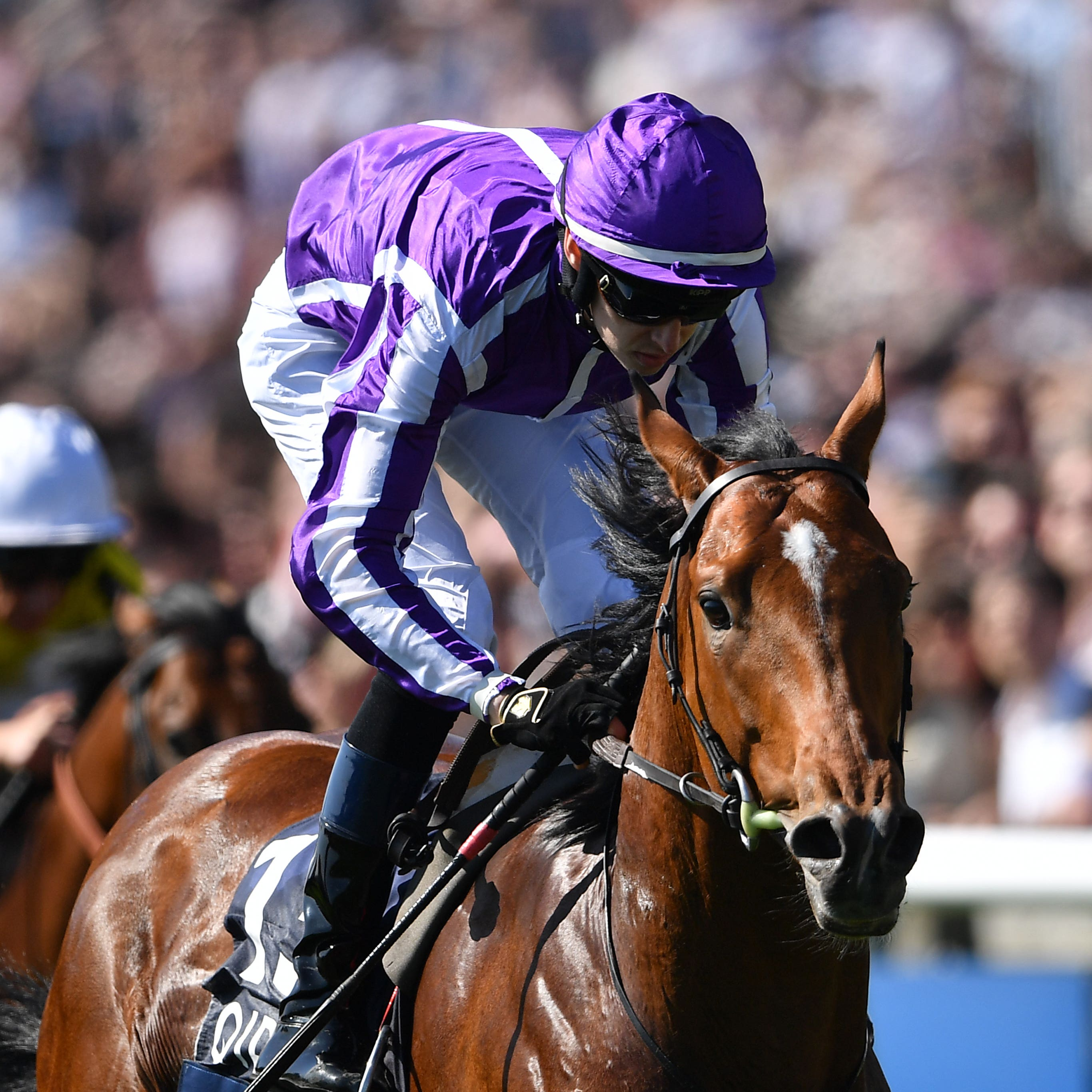 Saxon Warrior on his way to winning the 2000 Guineas at Newmarket