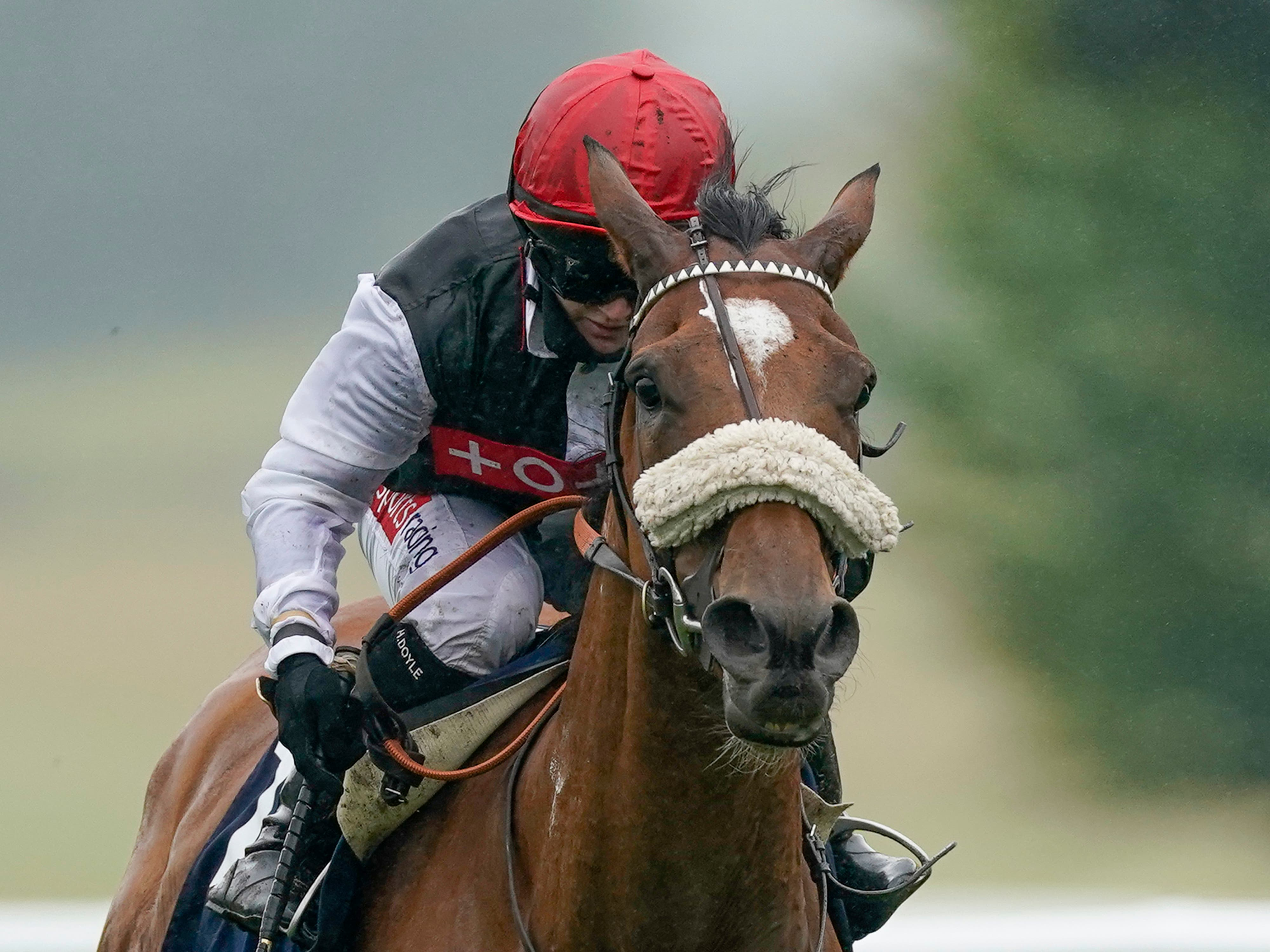 Dame Malliot finished third in the Prix Vermeille (Alan Crowhurst/PA)