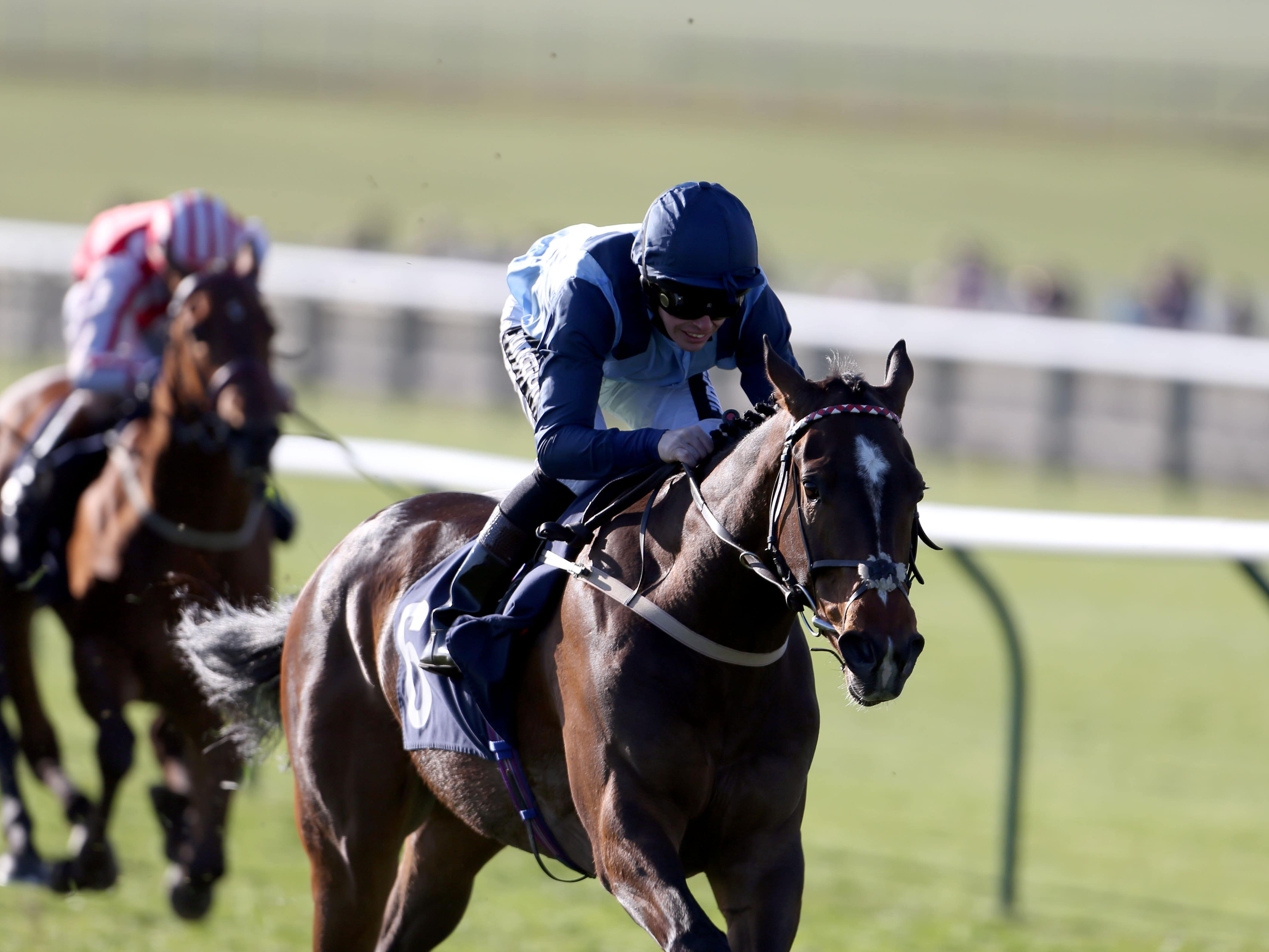 Danzeno could bypass an outing in the Wokingham at Royal Ascot (Steve Parsona/PA)