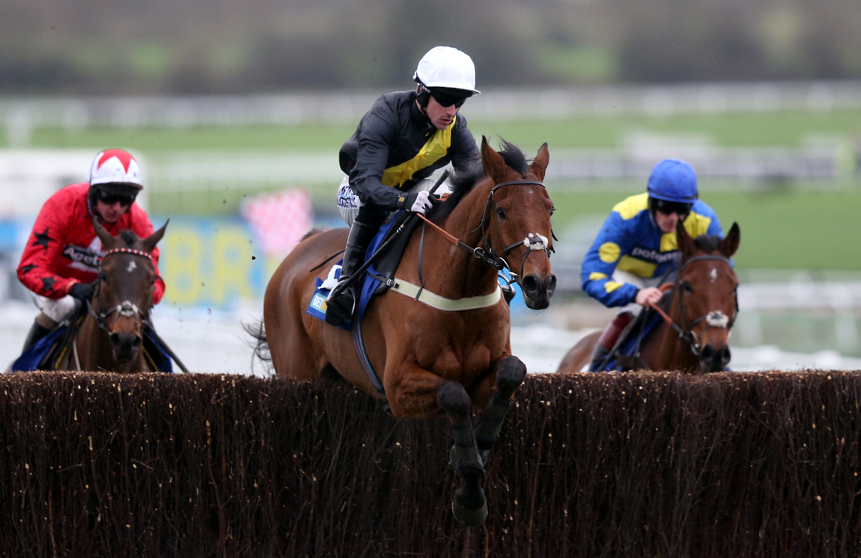 Seeyouatmidnight and Brian Hughes winning the Dipper Novices' Chase at Cheltenham