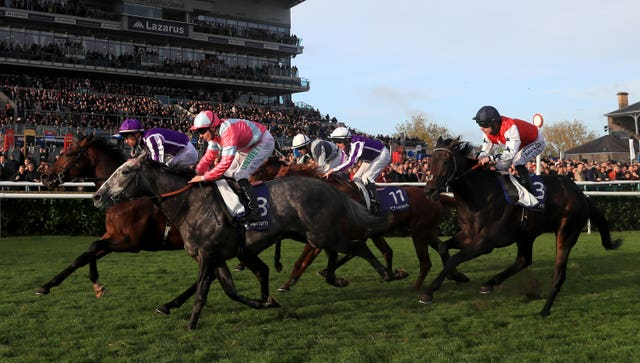 Phoenix Of Spain (grey) pushed Magna Grecia all the way at Doncaster