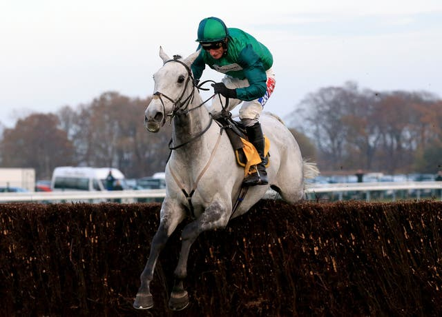 Bristol De Mai is a dual Betfair Chase winner