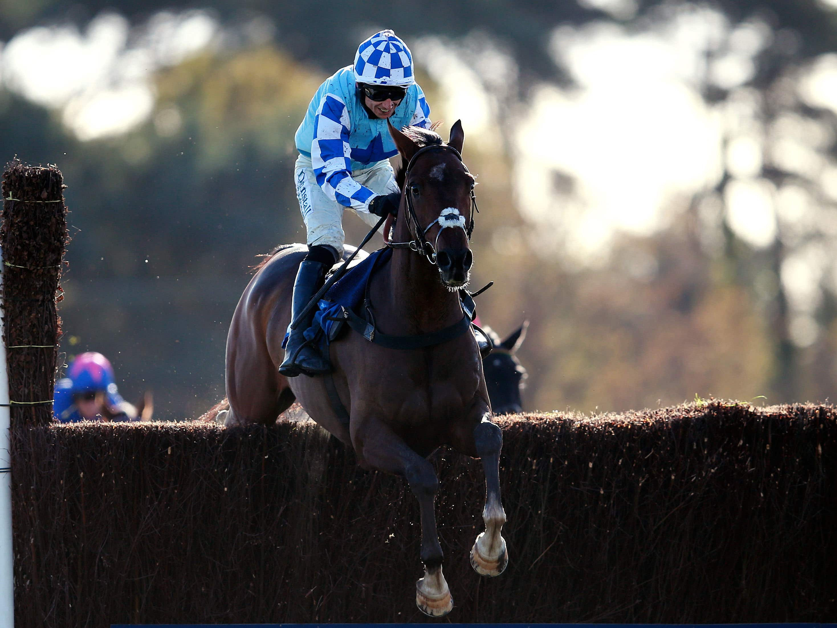 God's Own goes for a third win in the Haldon Gold Cup at Exeter (David Davies/PA)