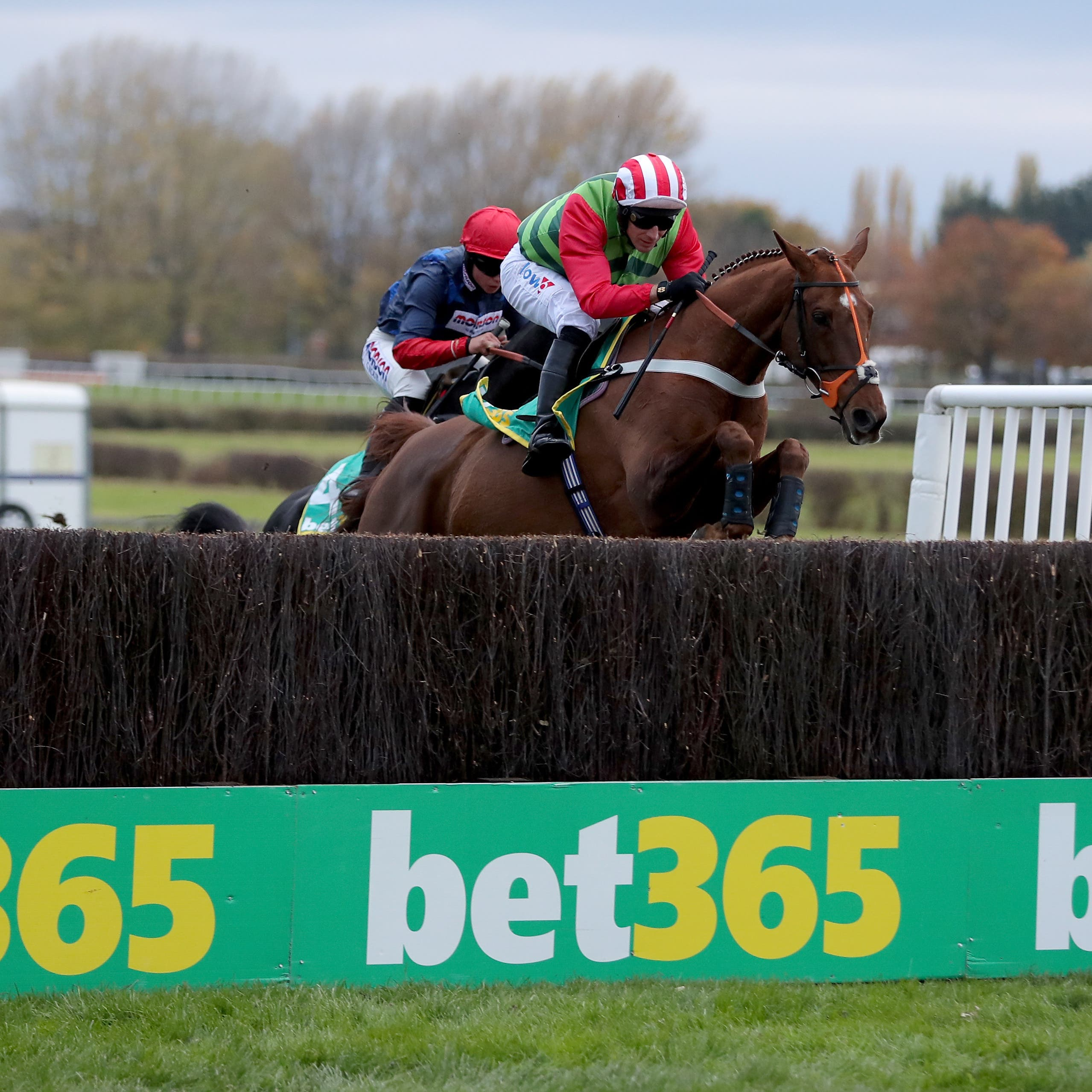 Definitly Red endured misfortune in the Gold Cup