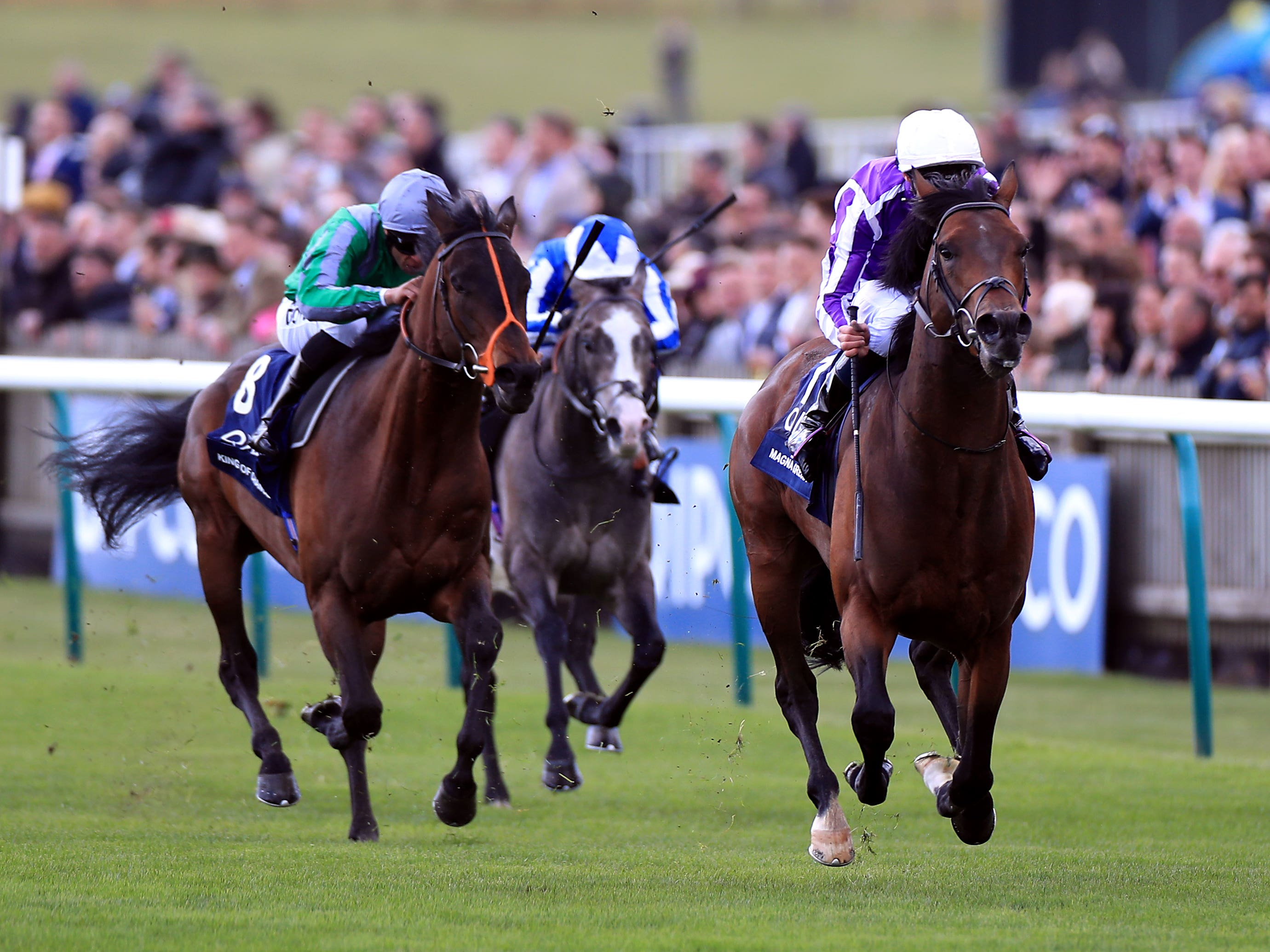 King Of Change (left) was second to Magna Grecia in the 2000 Guineas (Mike Egerton/PA)