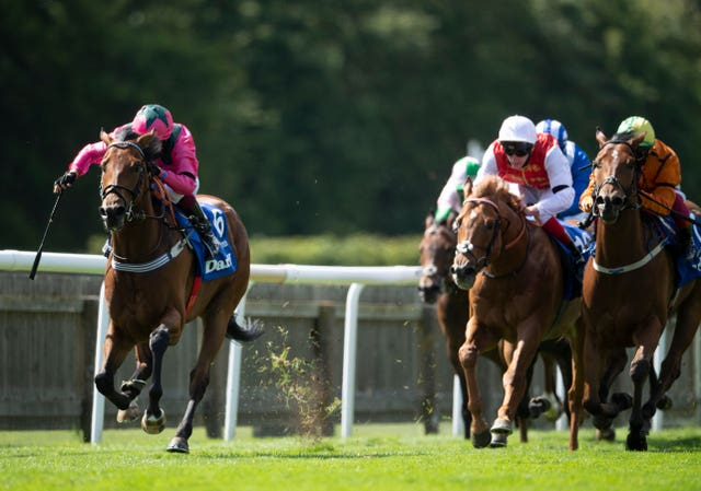 Oxted (left) has not run since his Group One win in July