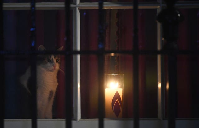 Larry the Cat sits next to a candle in a window at 10 Downing Street for Holocaust Memorial Day