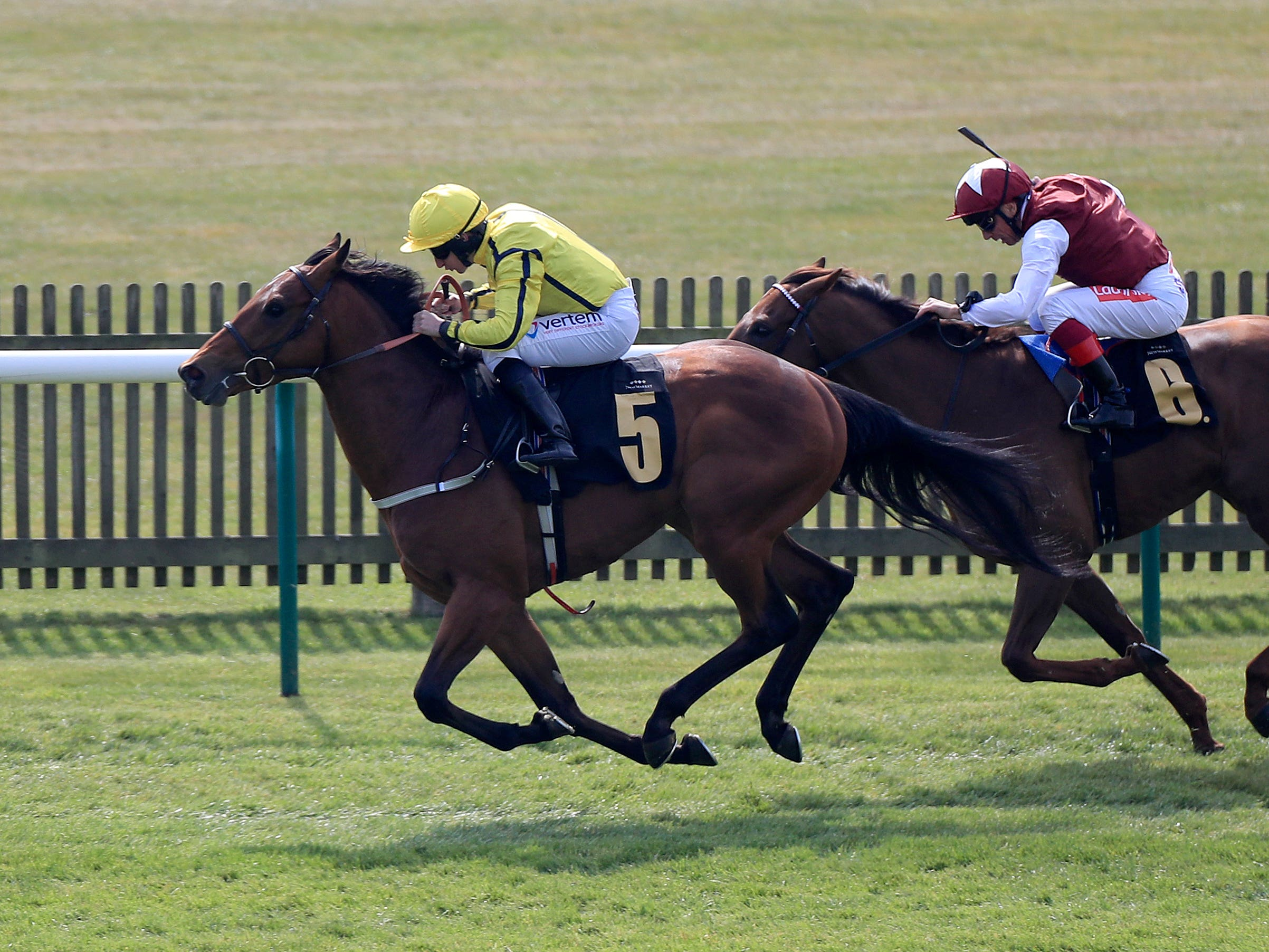 Far Above (left) is likely to return to France for his next start (Mike Egerton/PA Images)