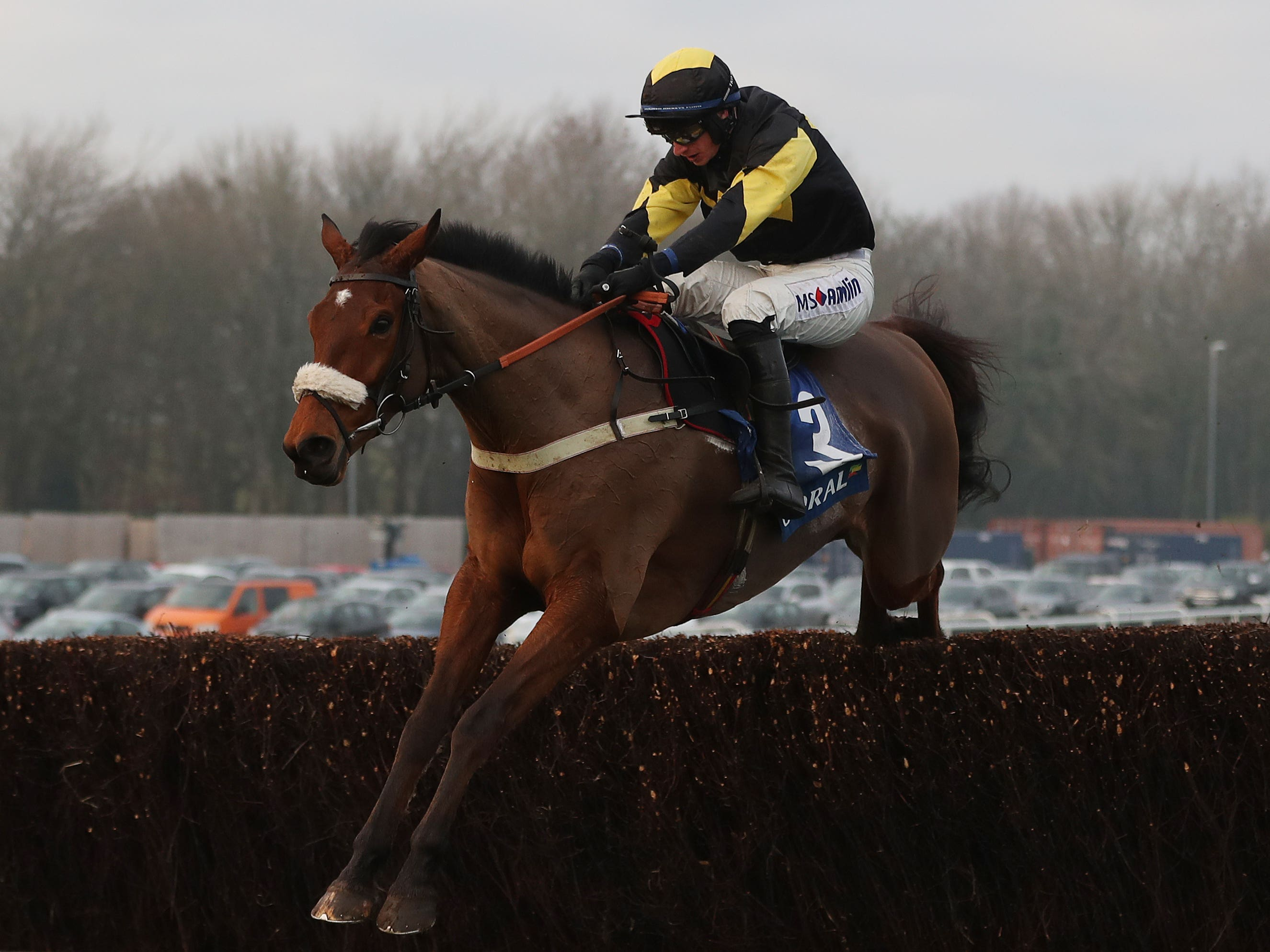 Elegant Escape is likely to swerve Haydock (David Davies/PA)