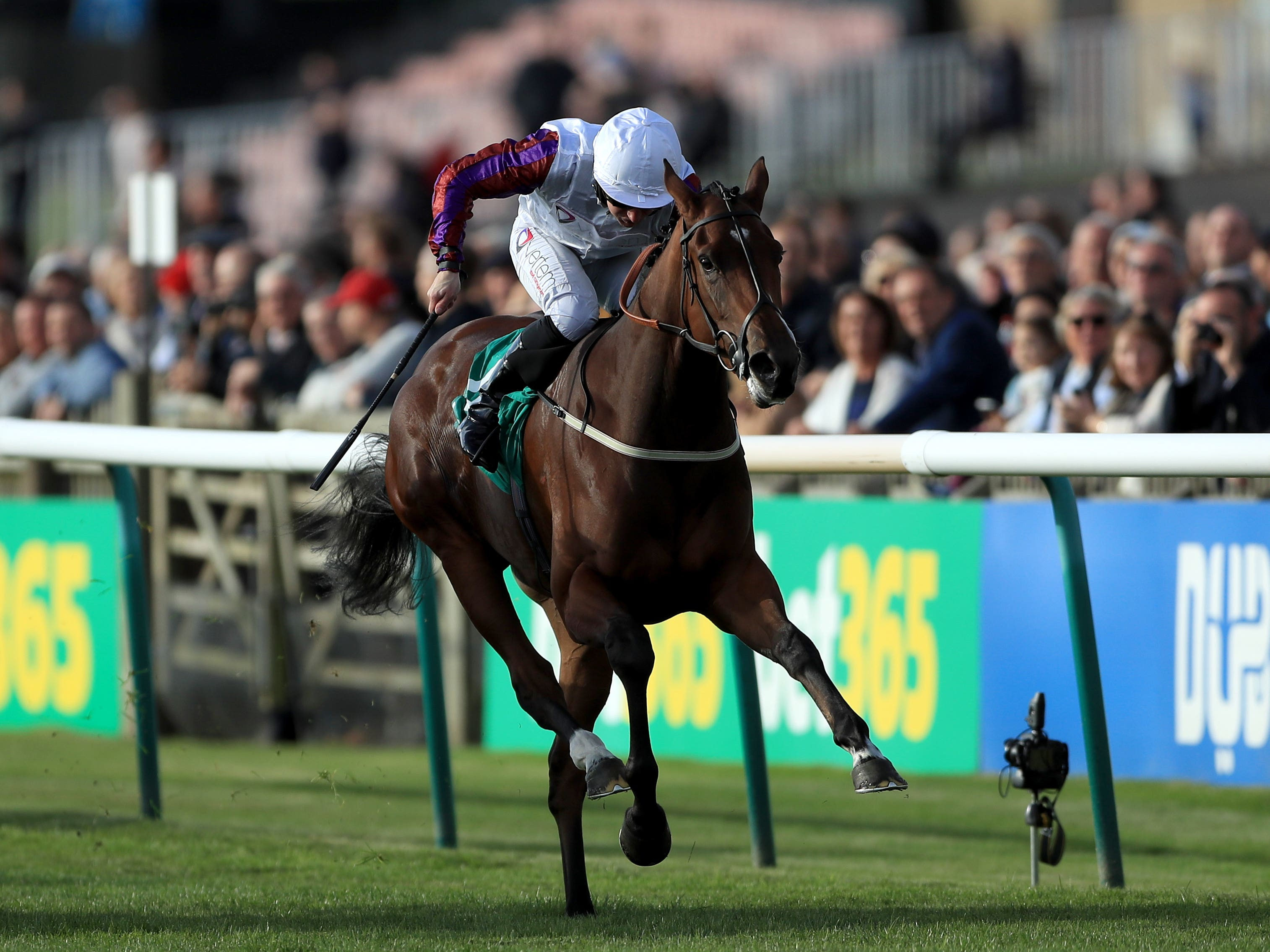 Laurens is looking to win a sixth Group One (Tim Goode/PA)