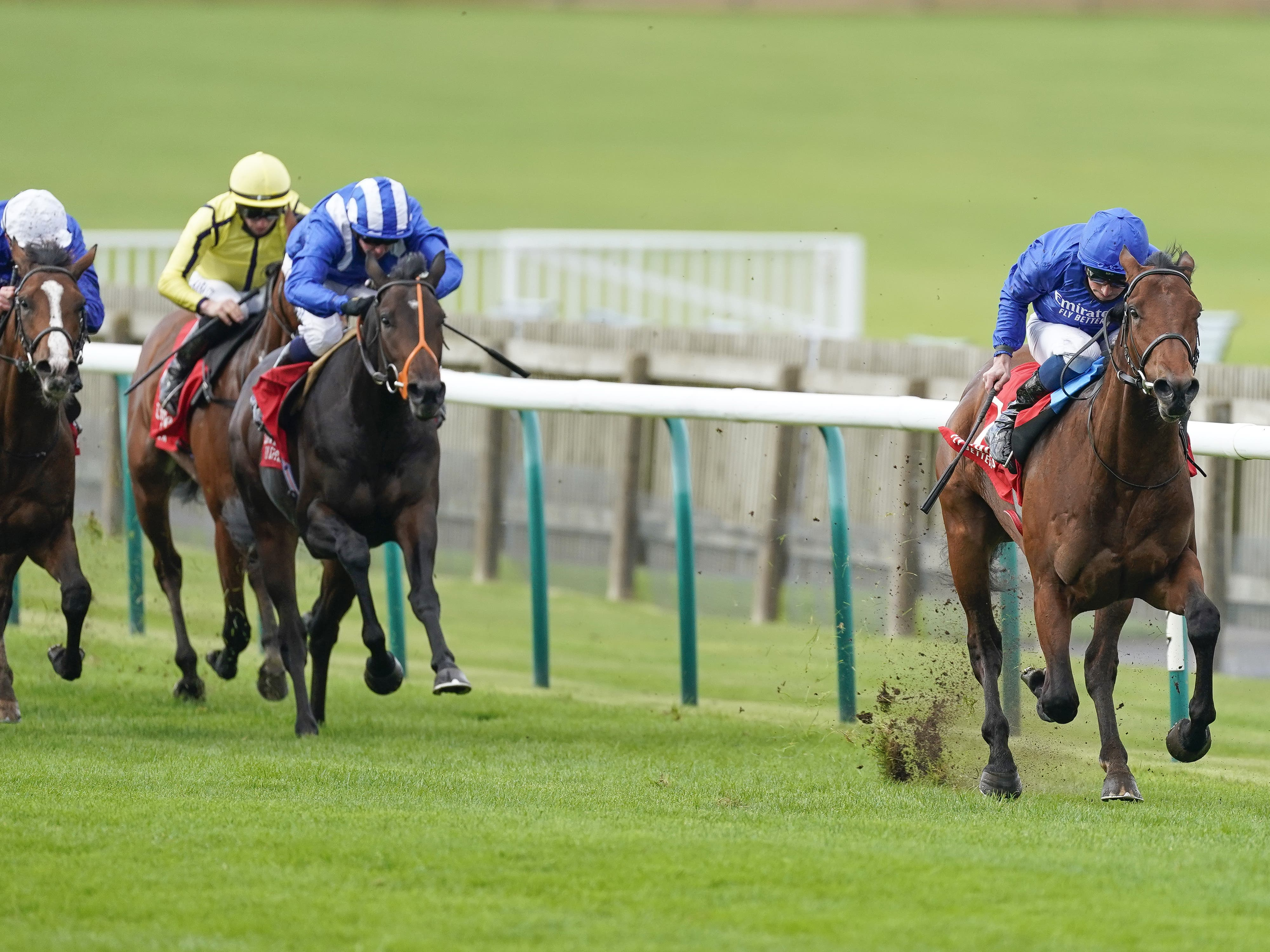 One Ruler was impressive in the Autumn Stakes (Alan Crowhurst/PA)