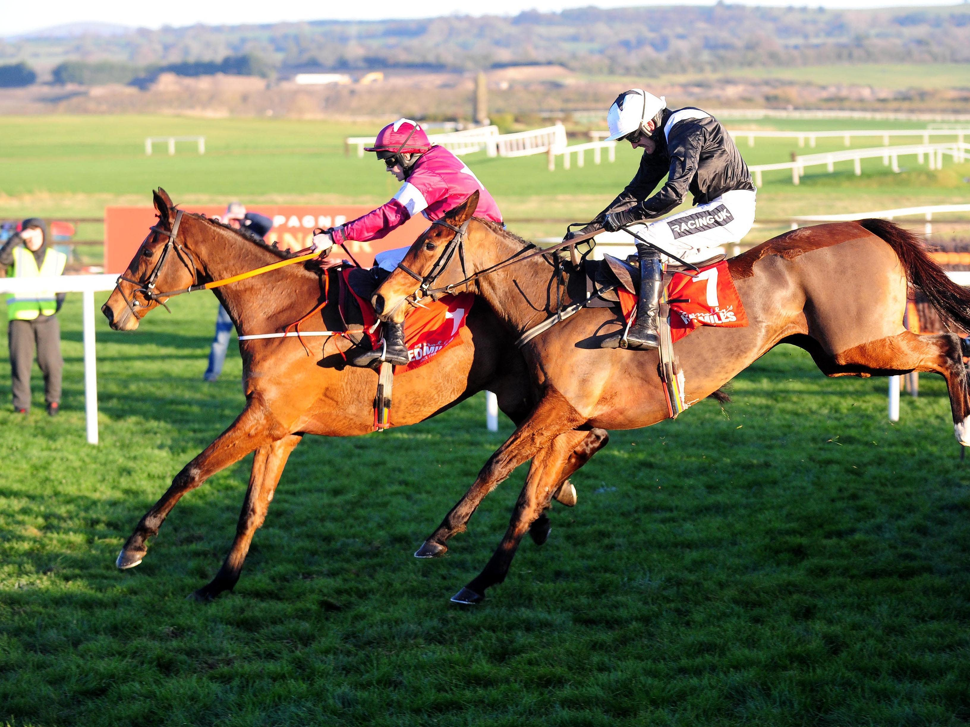 Relegate (near side) got off the mark over hurdles at Naas (PA Wire)