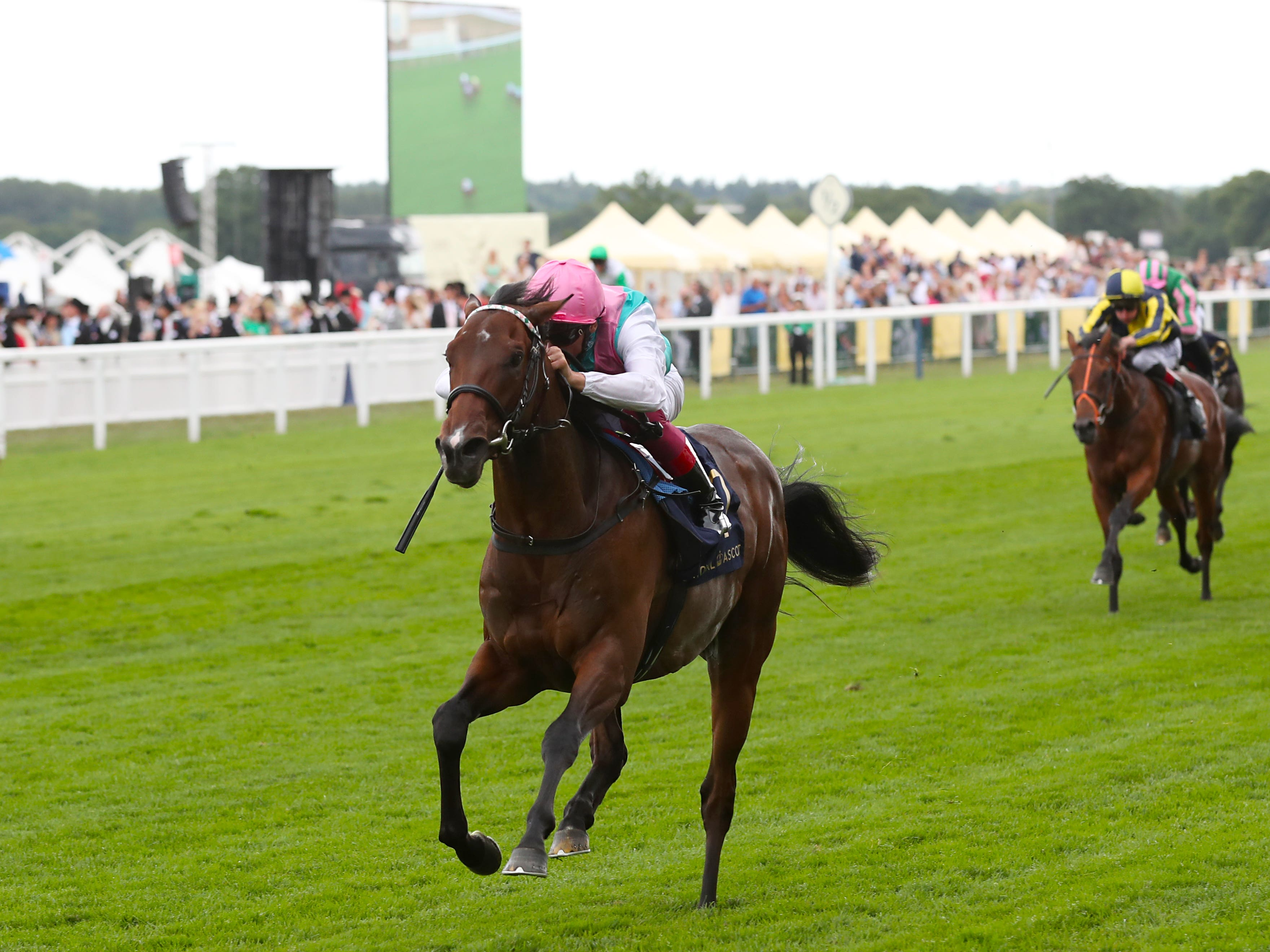 Calyx was a dazzling winner at Royal Ascot (Steve Parsons/PA)