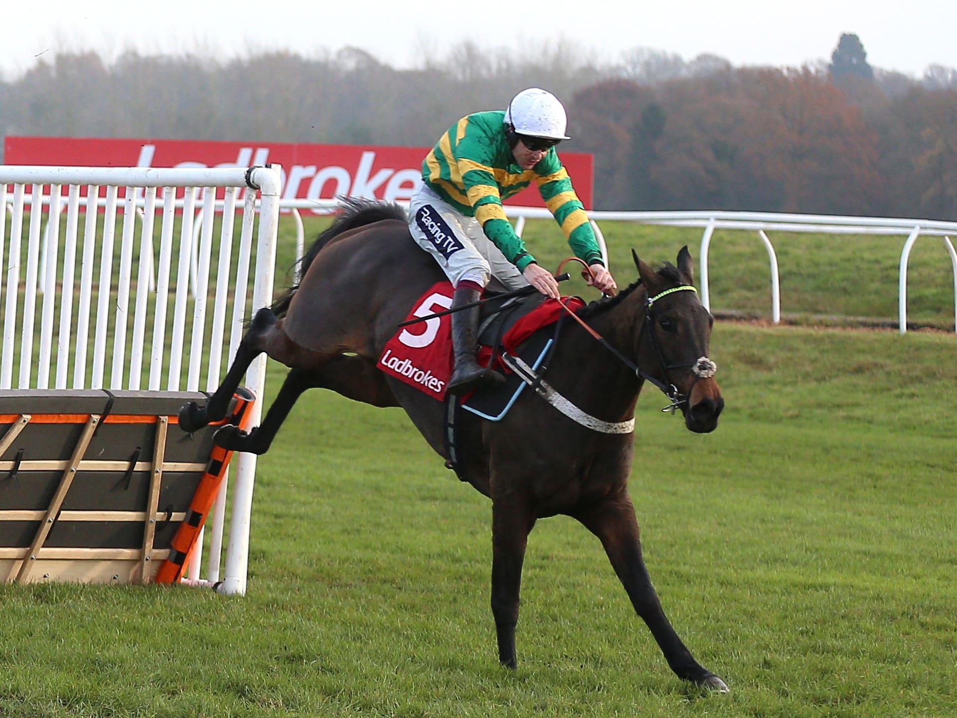 Epatante was impressive at Newbury (Nigel French/PA)