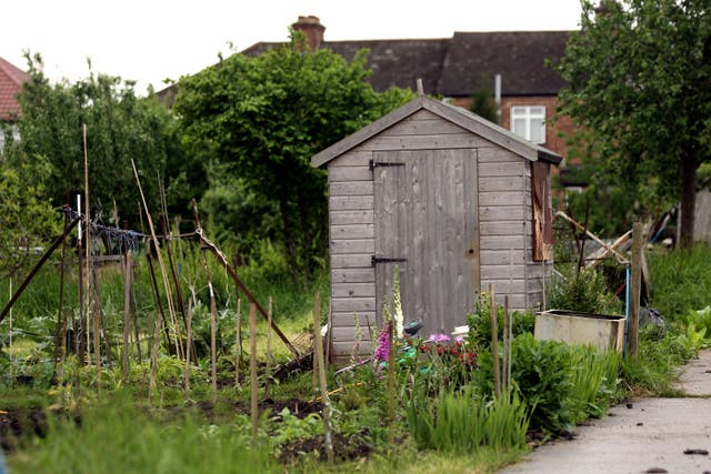 Allotments stock