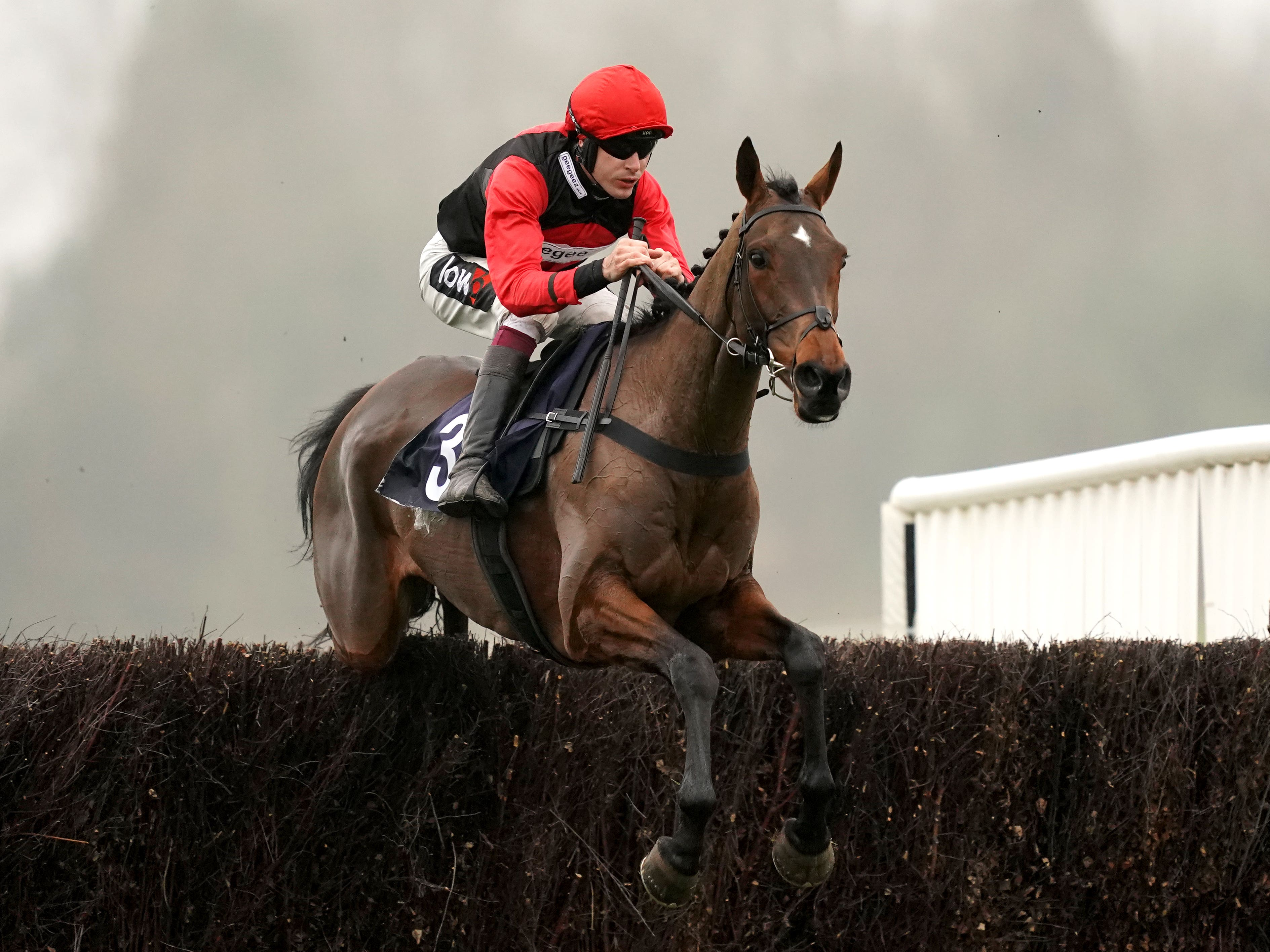 Sam Brown has been impressive over fences to date (John Walton/PA)