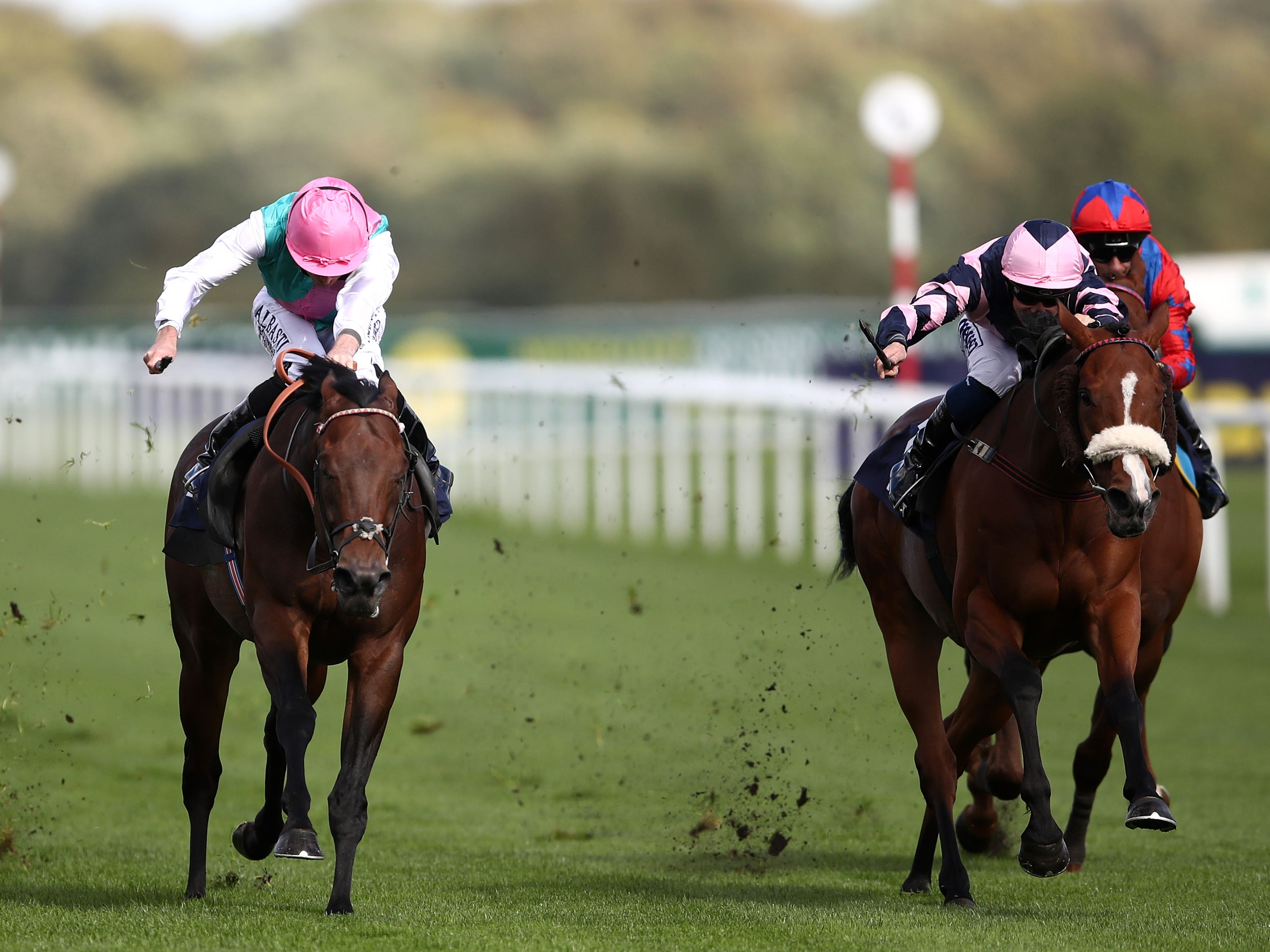 Equilateral in winning action at Doncaster (Tim Goode/PA)