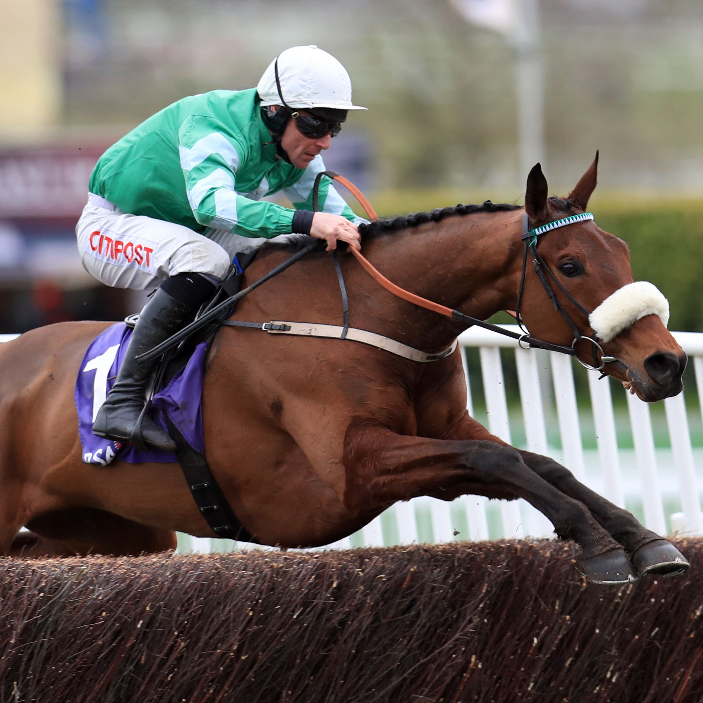 Presenting Percy on his way to winning the RSA Chase at Cheltenham
