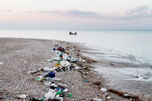 Plastic waste ends up in the oceans where it harms wildlife (Timothy Townsend/PA)