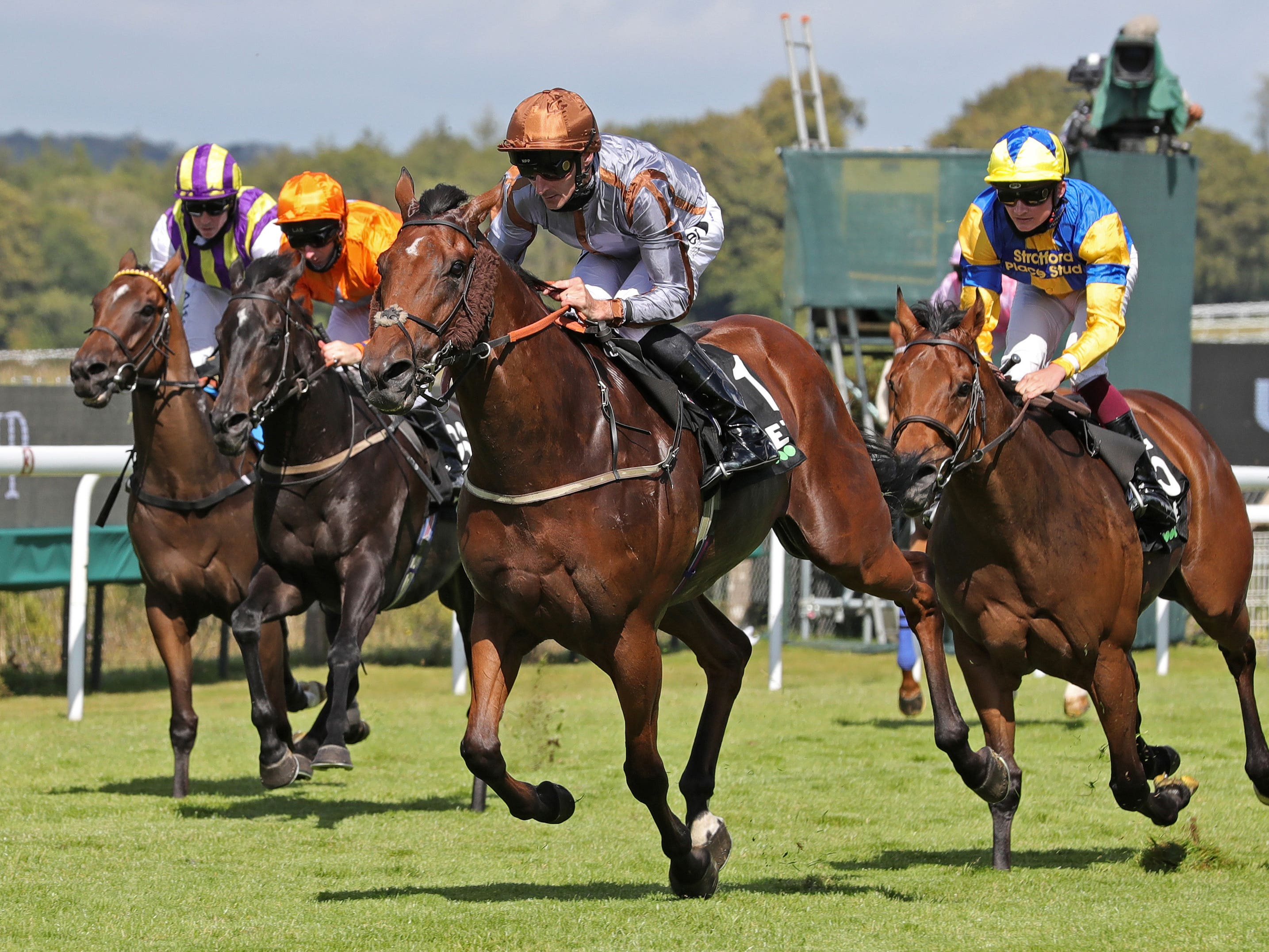 Summerghand got the big victory he deserved in the Stewards' Cup (Debbie Burt/PA)