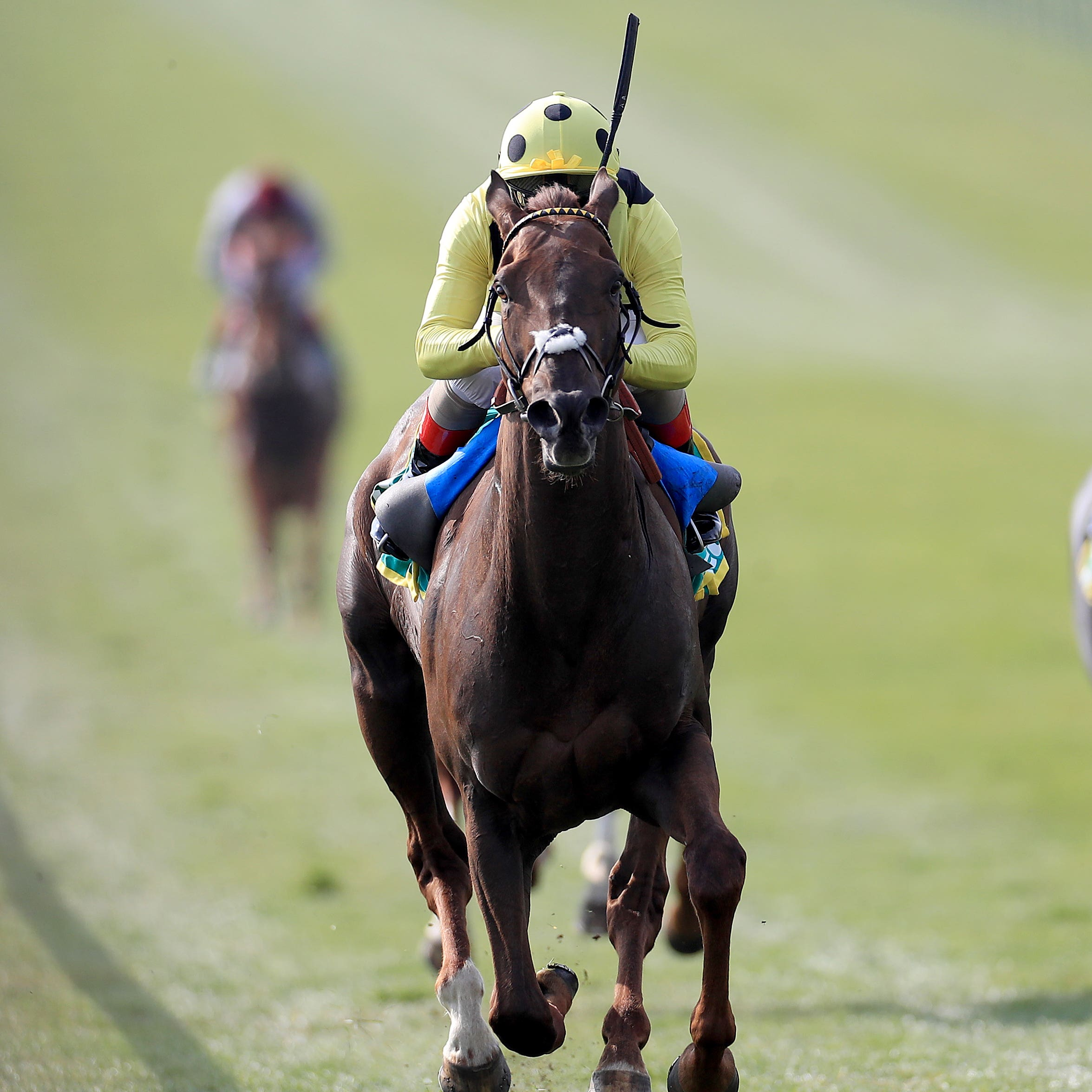 Zabeel Prince wins the Earl of Sefton Stakes at Newmarket