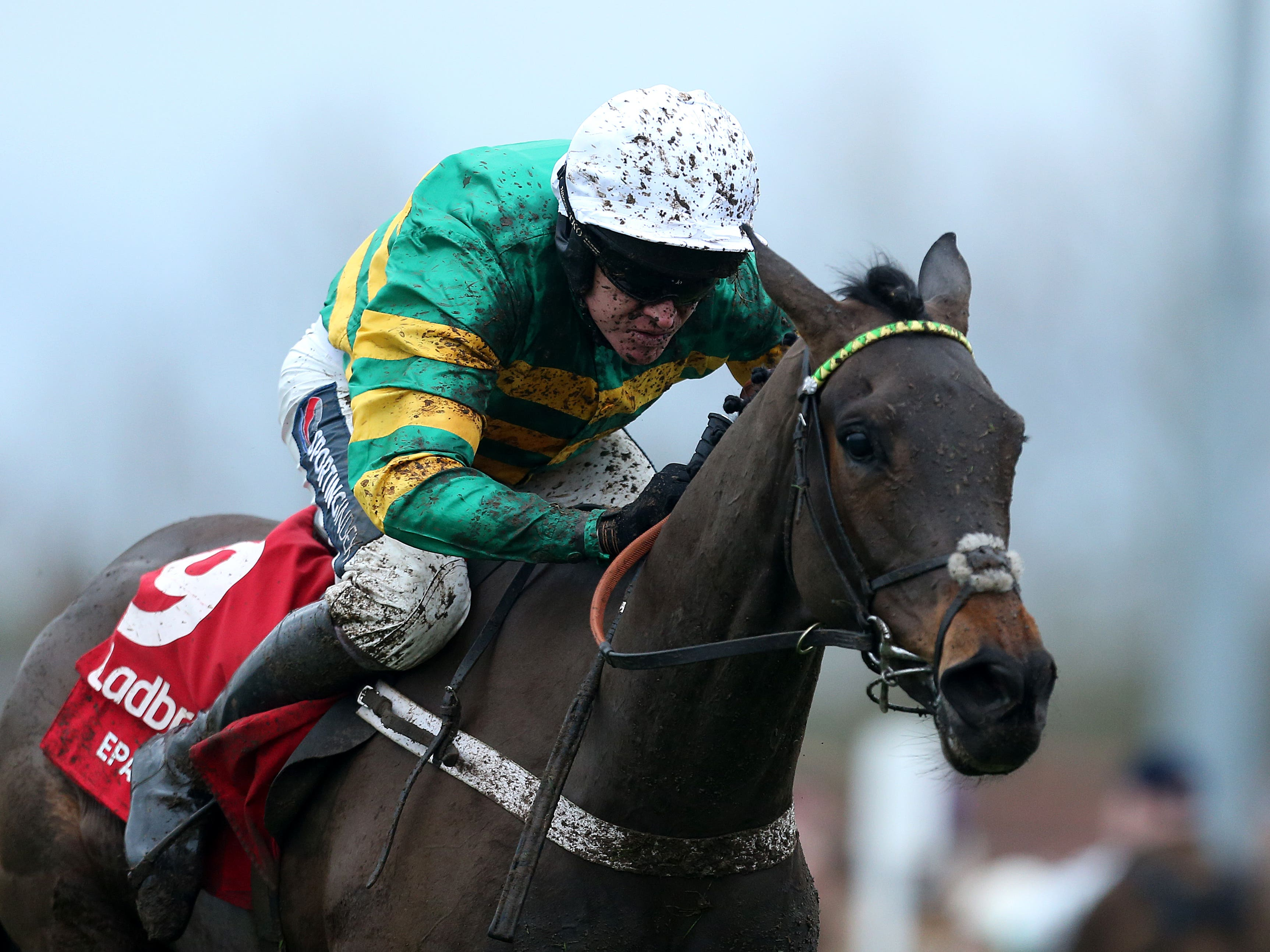 Epatante won an eventful renewal of the Betfair Fighting Fifth Hurdle (Steve Paston/PA)