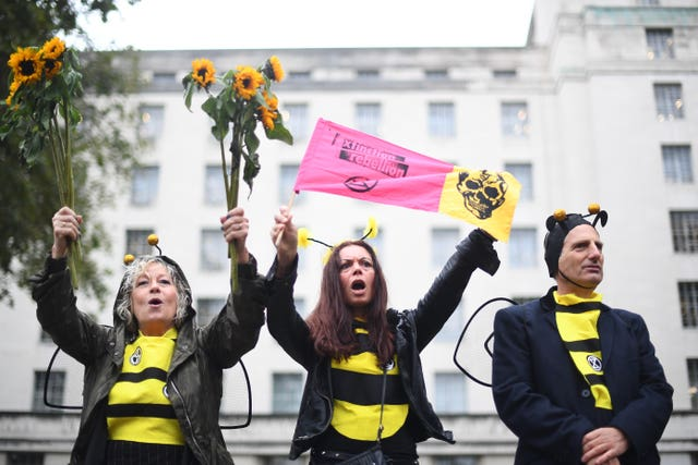 Demonstrators dressed as bees on Whitehall, outside Downing Street, during an Extinction Rebellion (XR) protest in Westminster, London (Victoria Jones/PA)