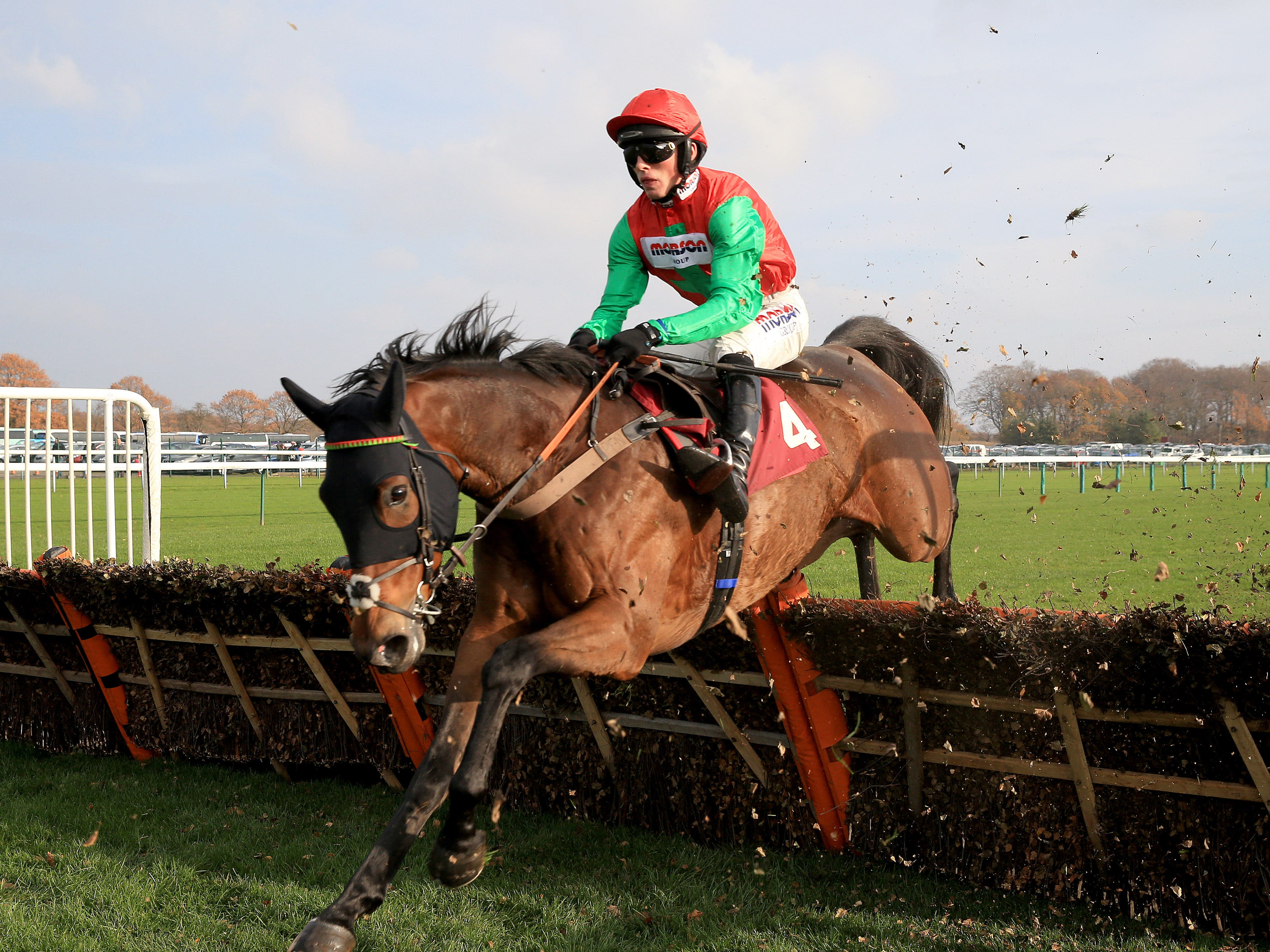 Grand Sancy is one of two runners for Paul Nicholls in the Greatwood Gold Cup (Clint Hughes/PA)