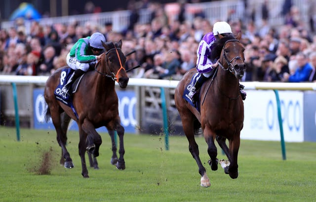 Winner of the 2000 Guineas at Newmarket, Magna Grecia is heading for the Irish Champion Stakes