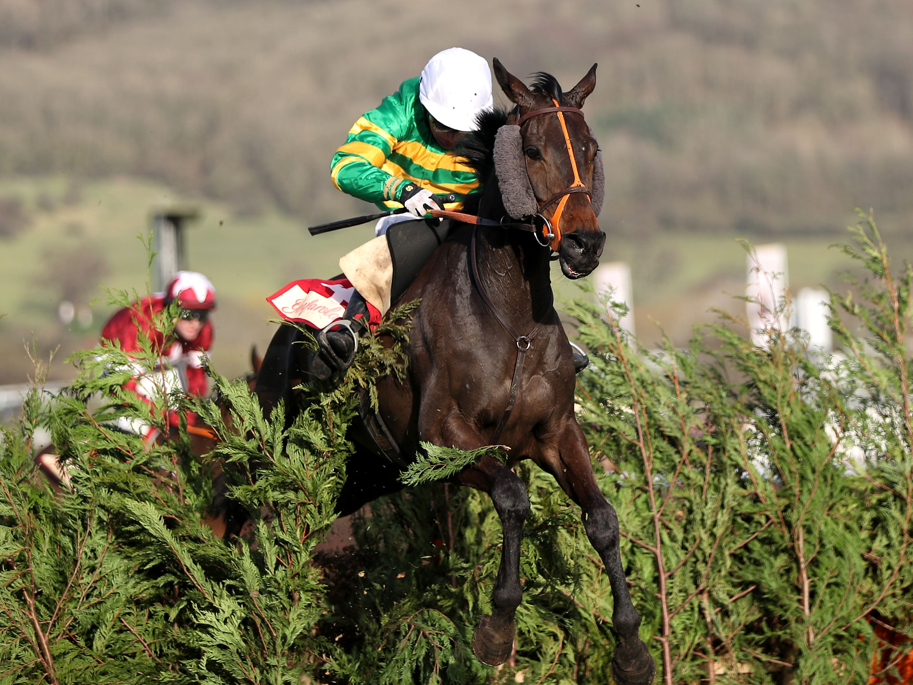 Easysland on his way to winning at the Cheltenham Festival (Simon Cooper/PA)