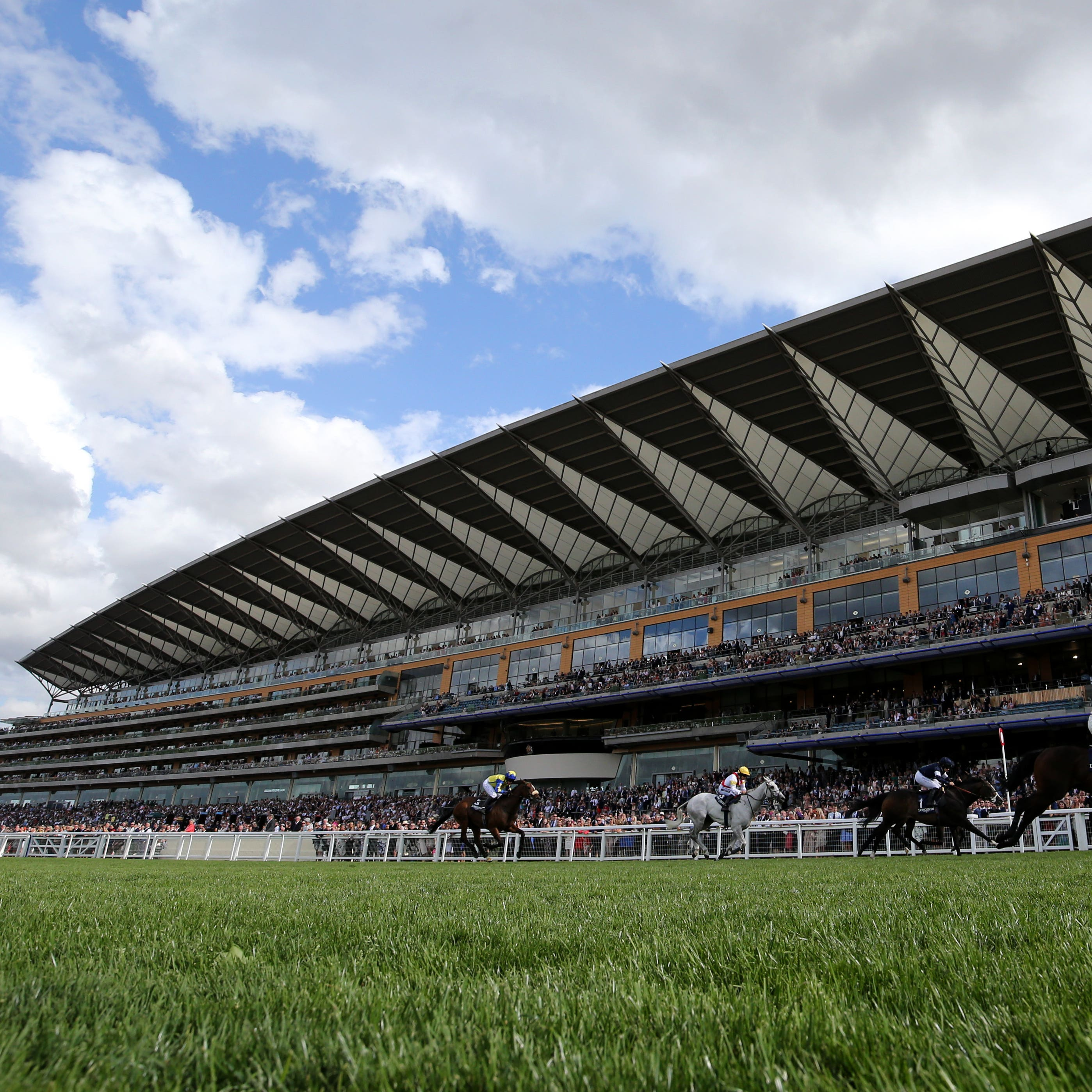 Champions Day set to take place on soft ground