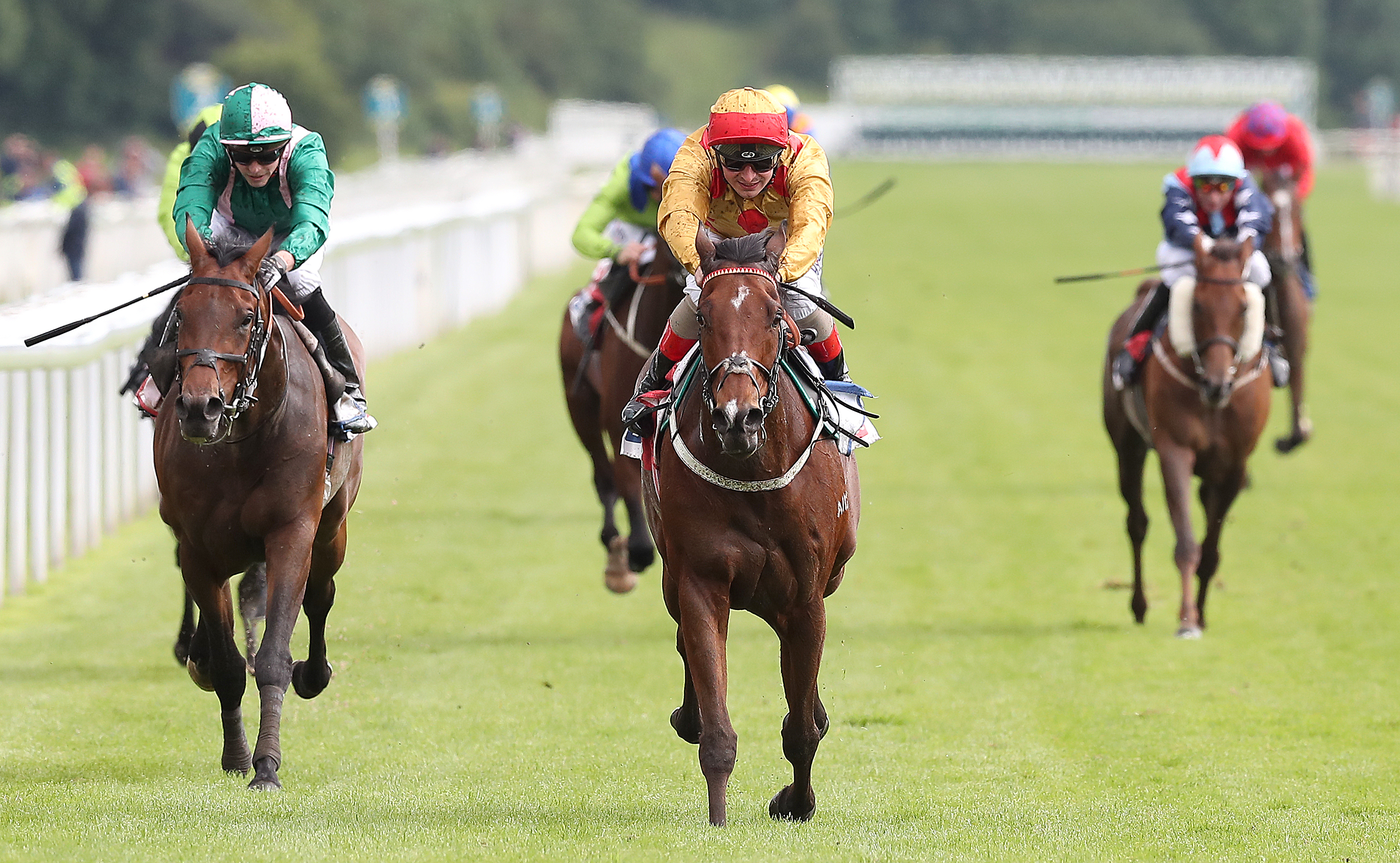 Gold Mount impressed in victory at York