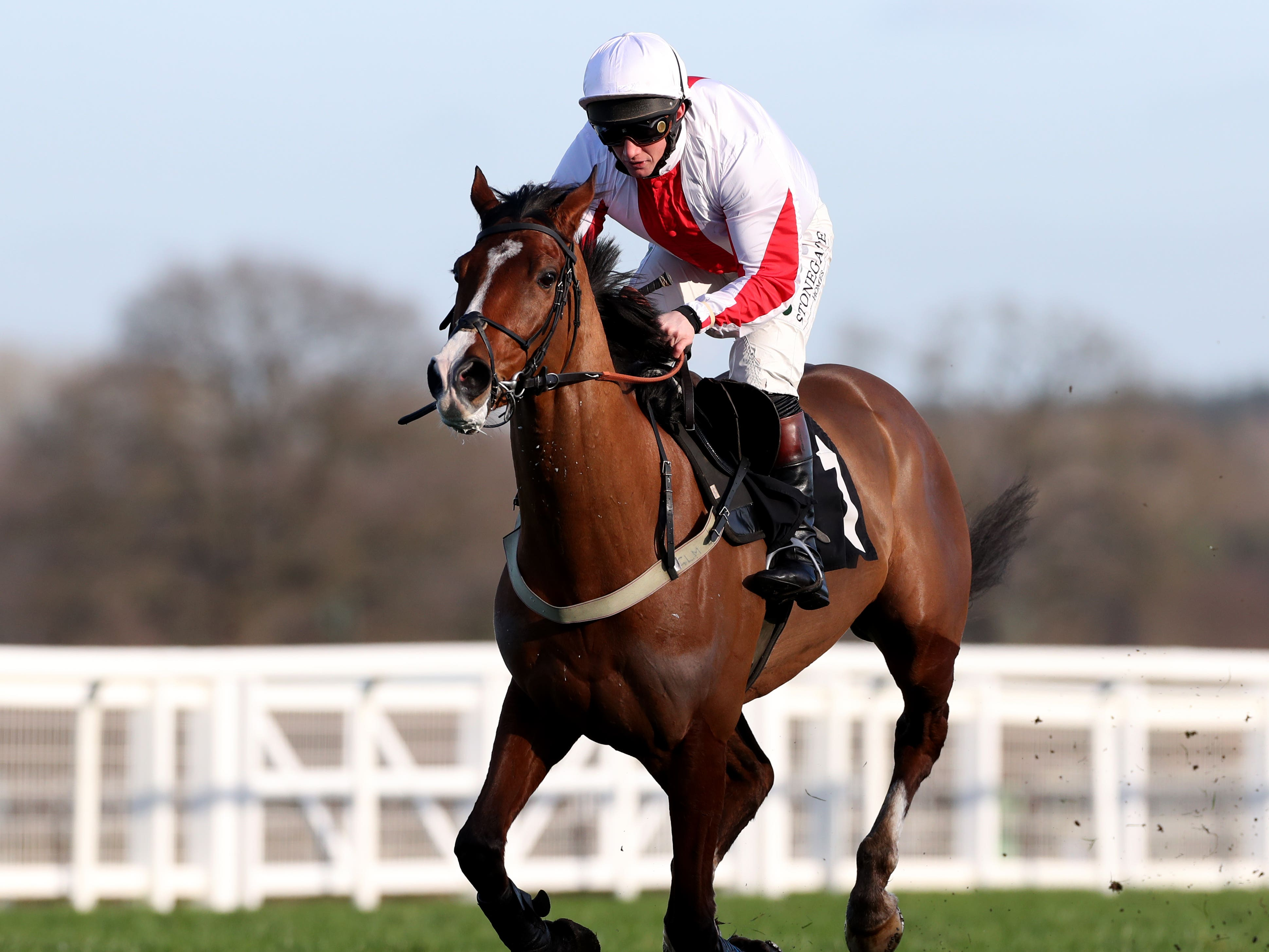 Goshen in winning action at Ascot (Bradley Collyer/PA)