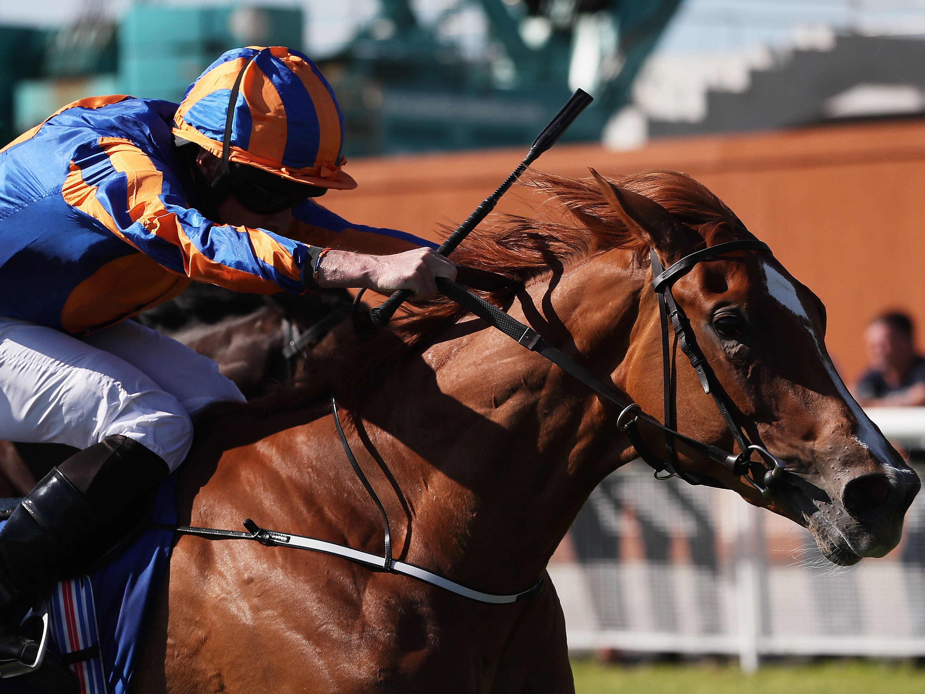 Peach Tree was on target for trainer Aidan O'Brien in the Stanerra Stakes at Leopardstown (Brian Lawless/PA)