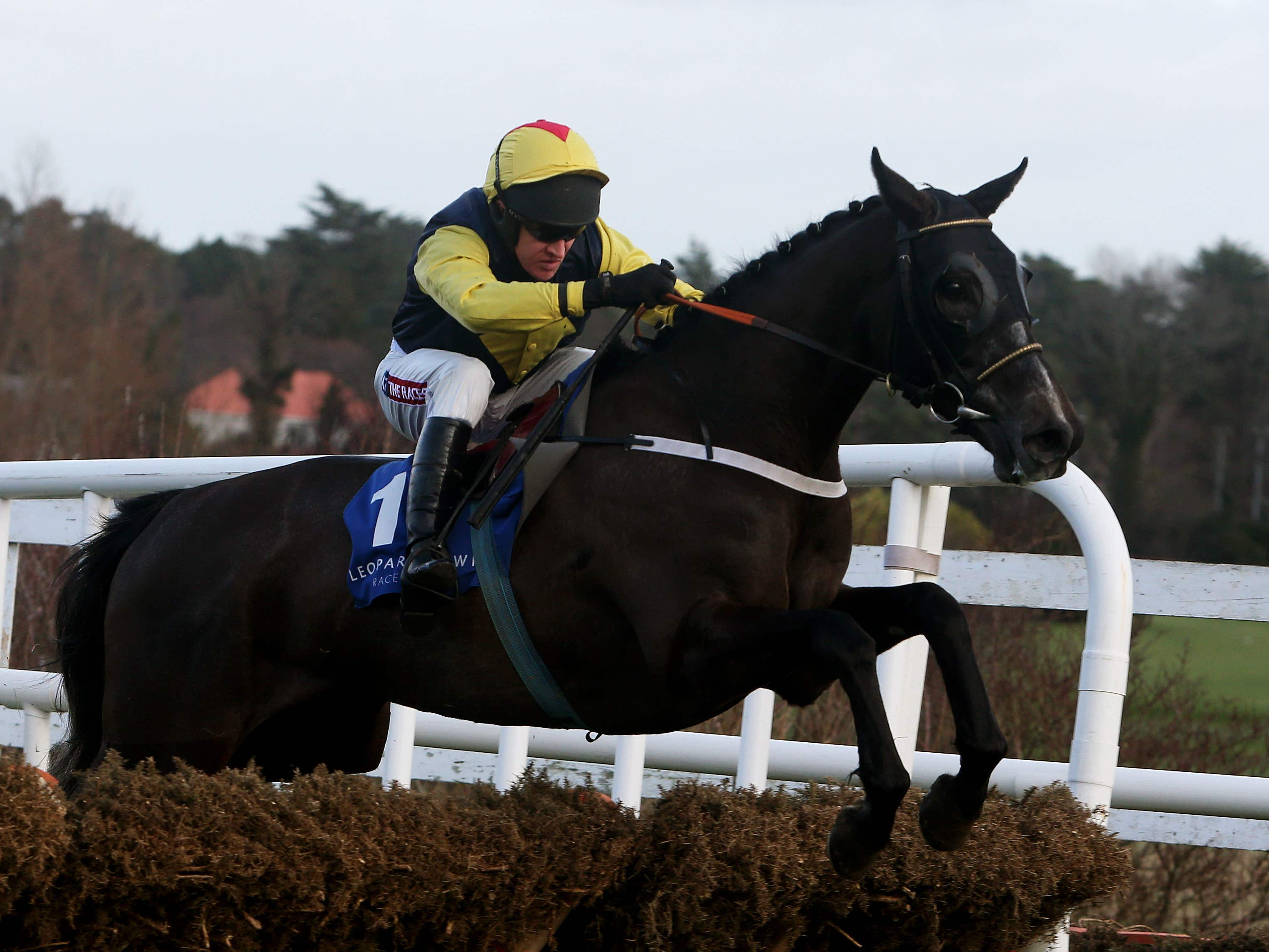 Guitar Pete will head to Wetherby on Boxing Day (Brian Lawless/PA)