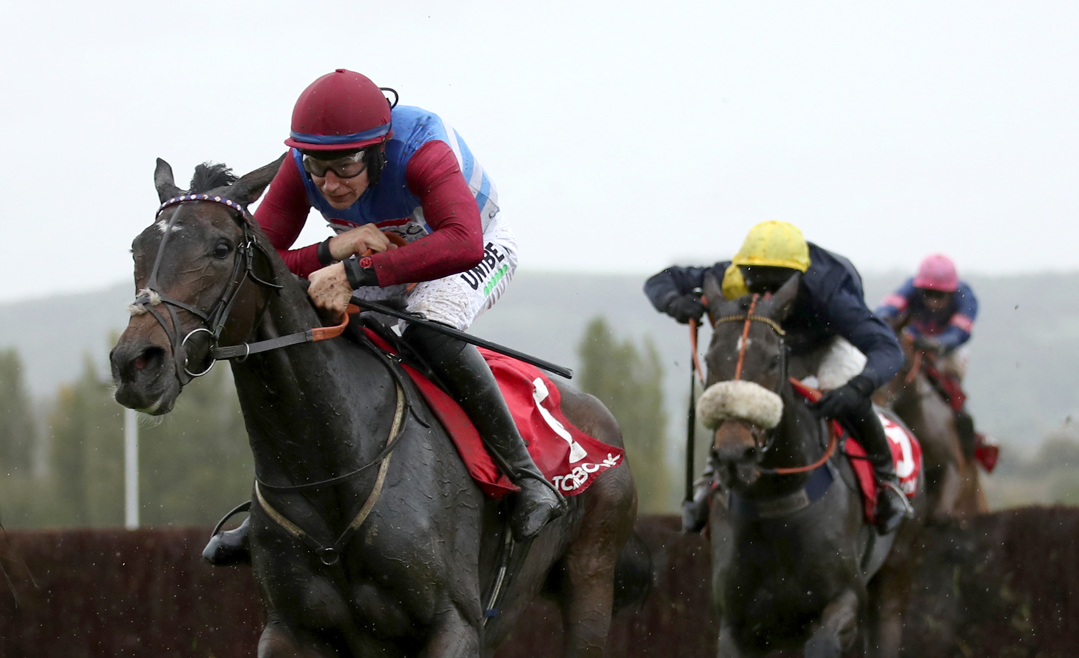 Mulcahys Hill delivered on his promise at Cheltenham