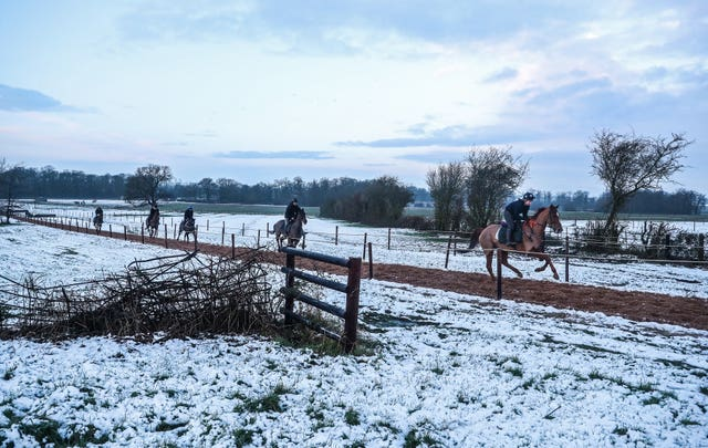 Horses gallop in the snow