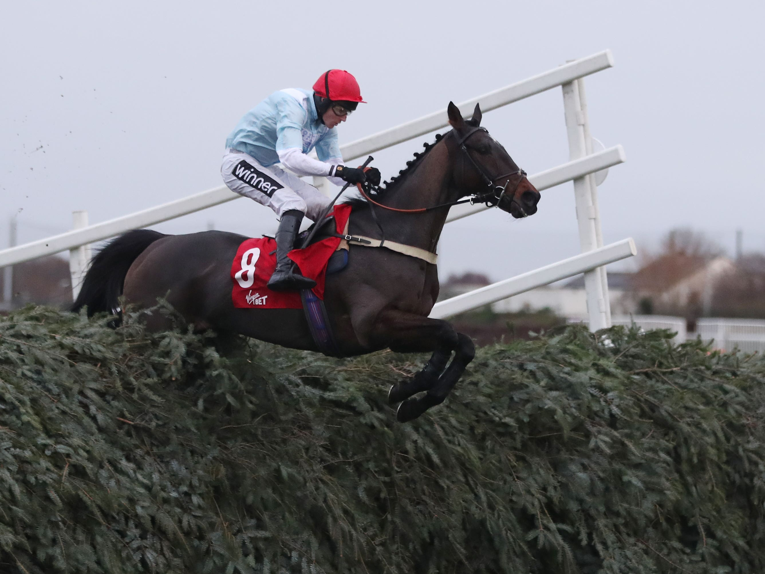 Hogan's Height and Tom Cannon on their way to victory in the Virgin Bet Grand Sefton Handicap Chase at Aintree (David Davies/PA)