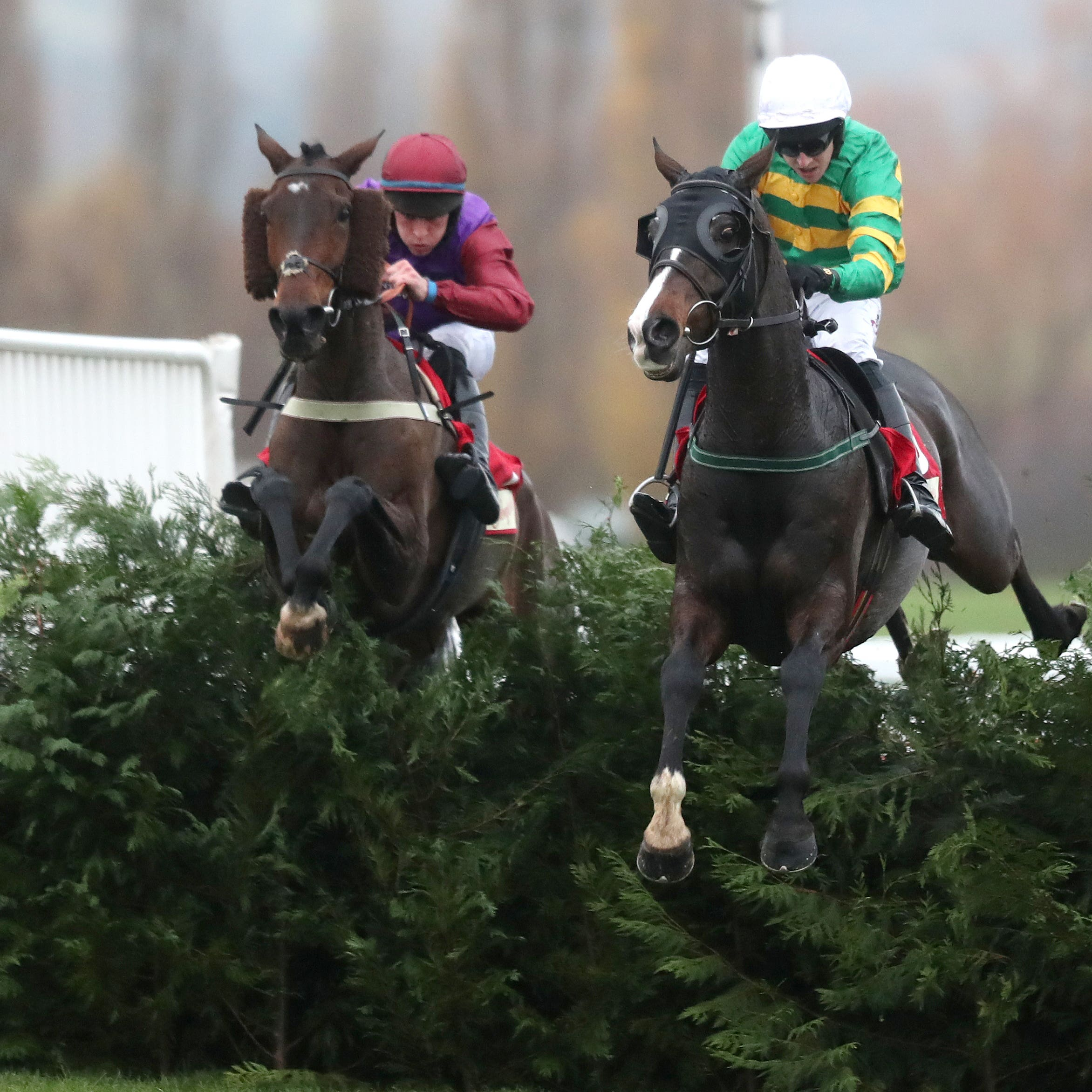 Fact Of The Matter (left) is no stranger to the Cheltenham cross country fences