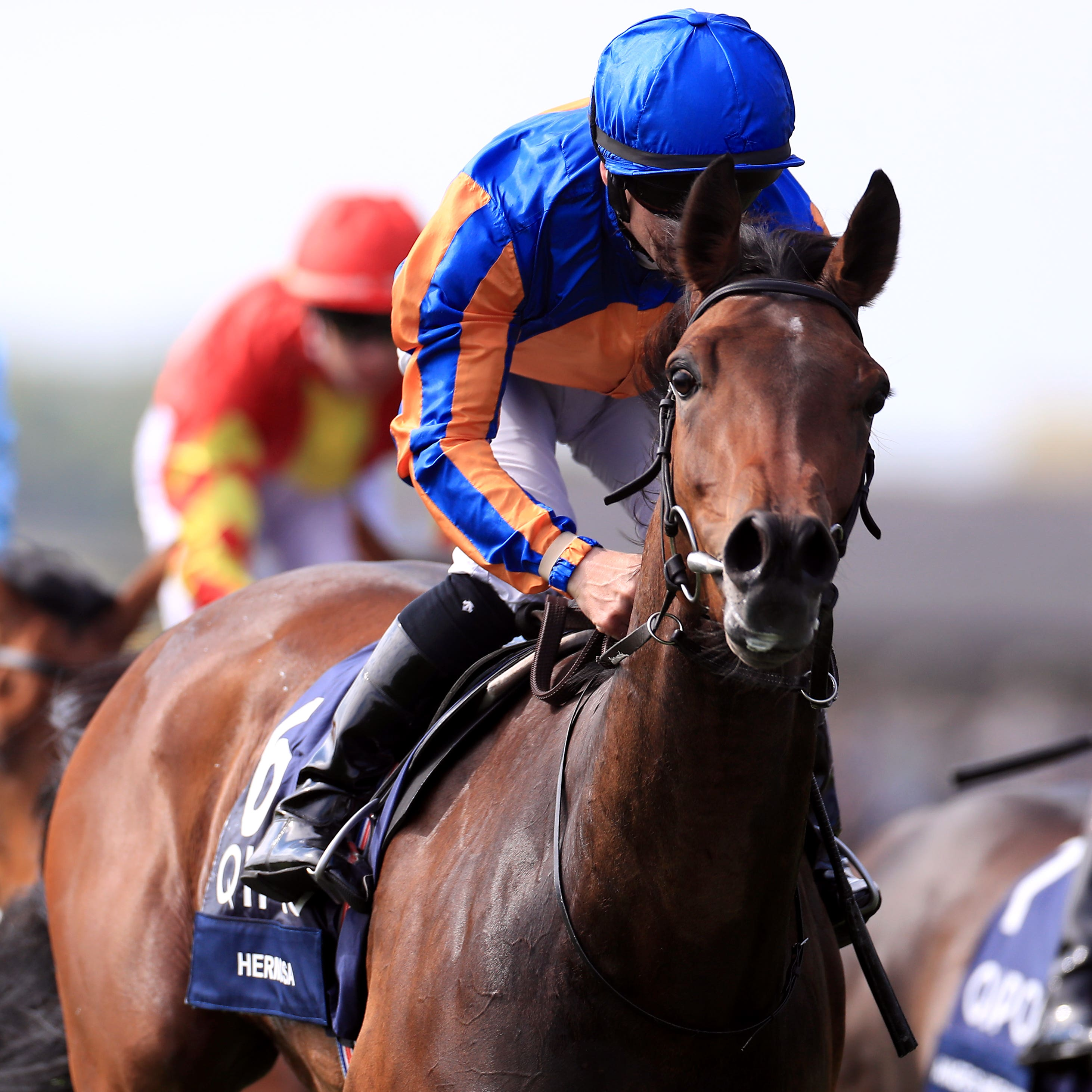 Hermosa, winner of the 1000 Guineas, has been left in the Oaks by trainer Aidan O'Brien