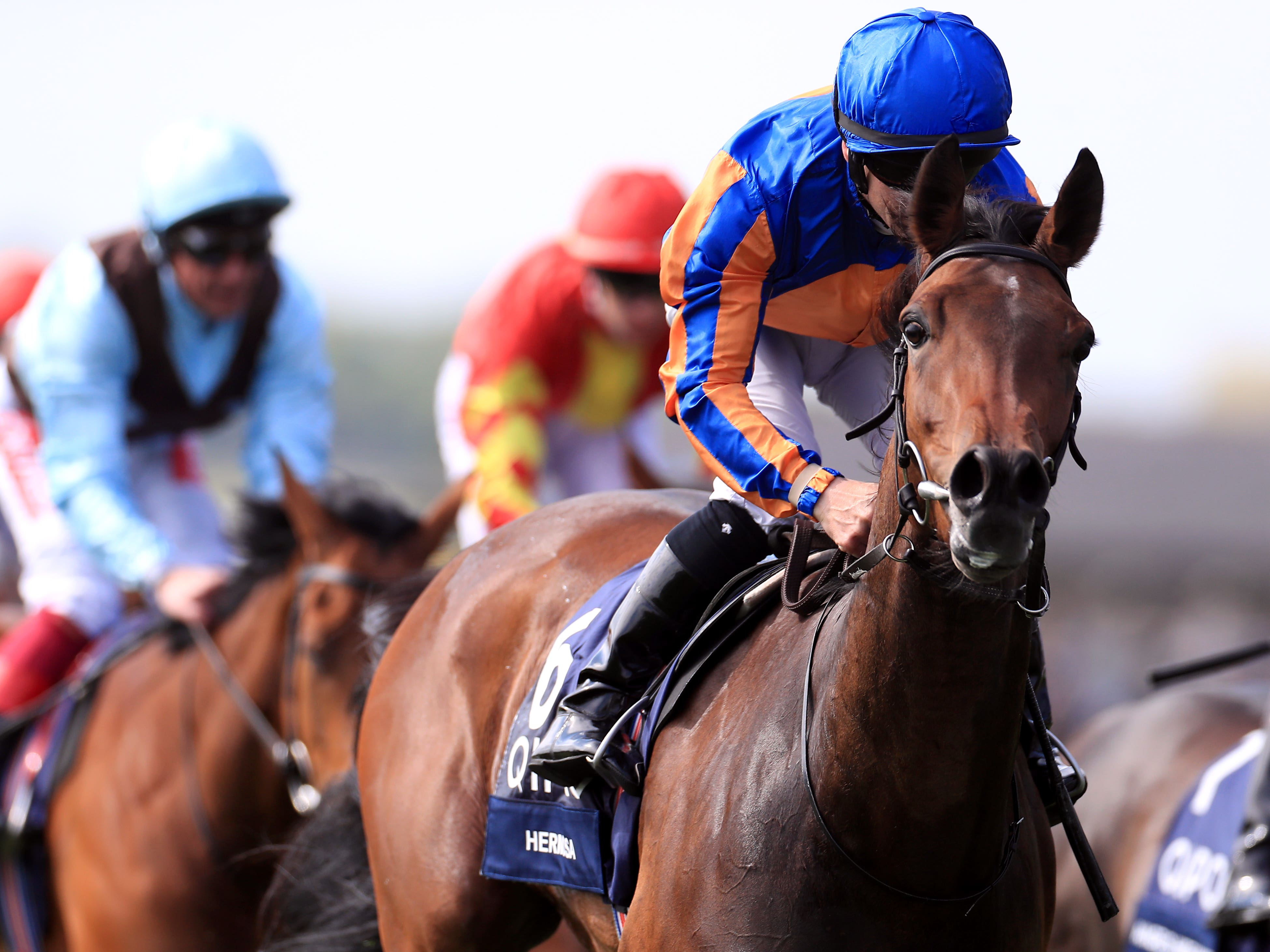 Hermosa, winner of the 1000 Guineas, has been left in the Oaks by trainer Aidan O'Brien (Mike Egerton/PA)