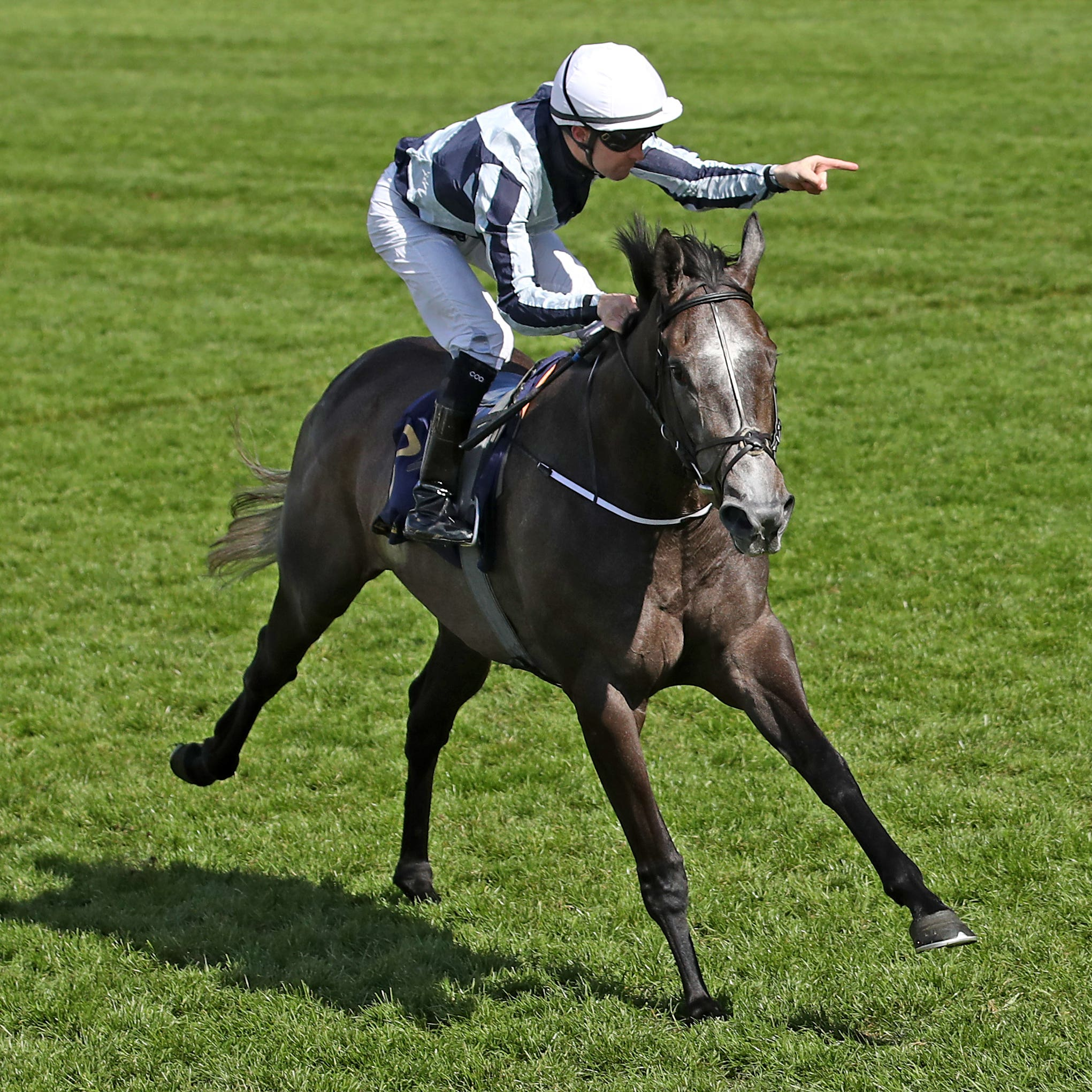 Alpha Centauri wins the Coronation Stakes at Royal Ascot